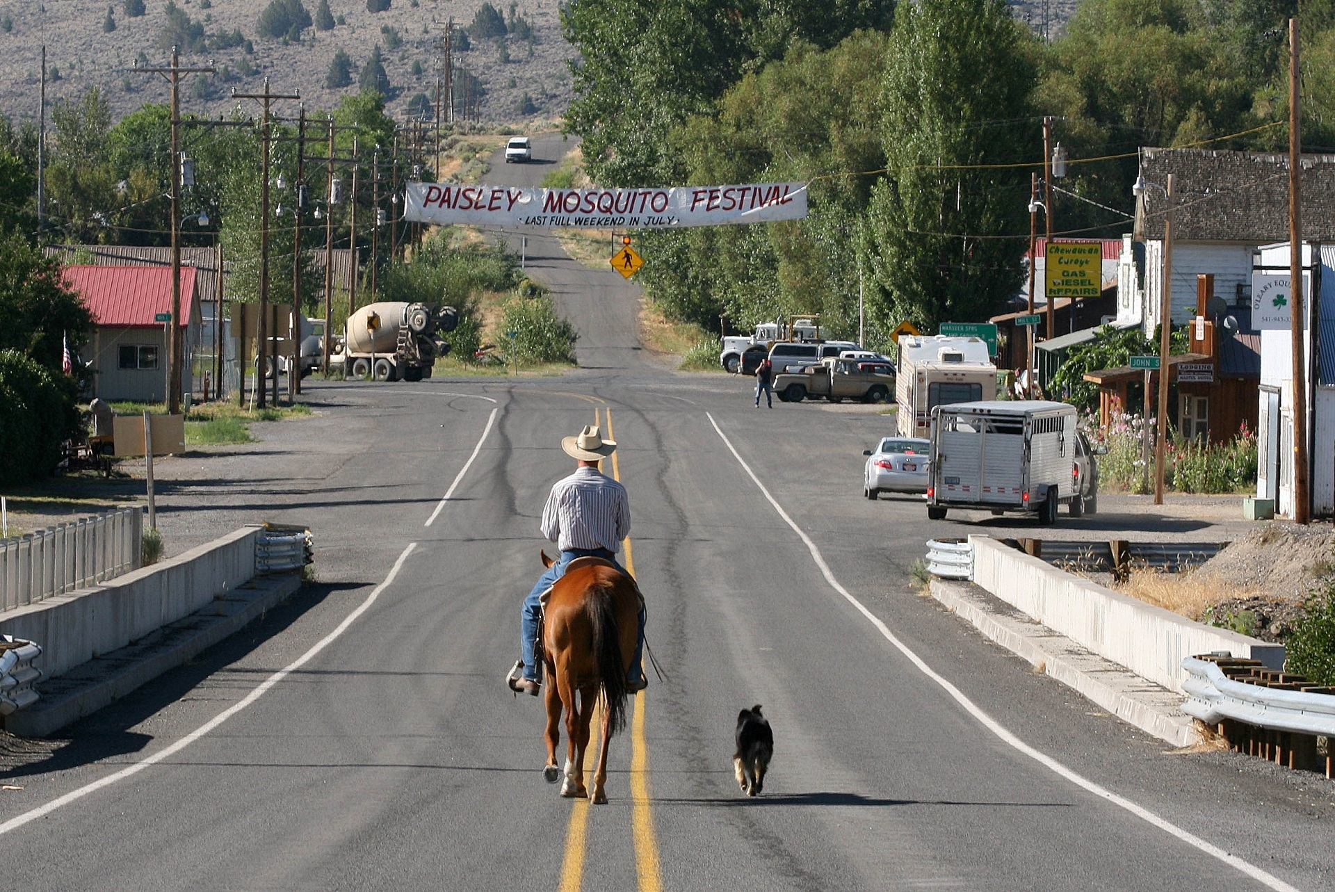 Cowboy on the road photo