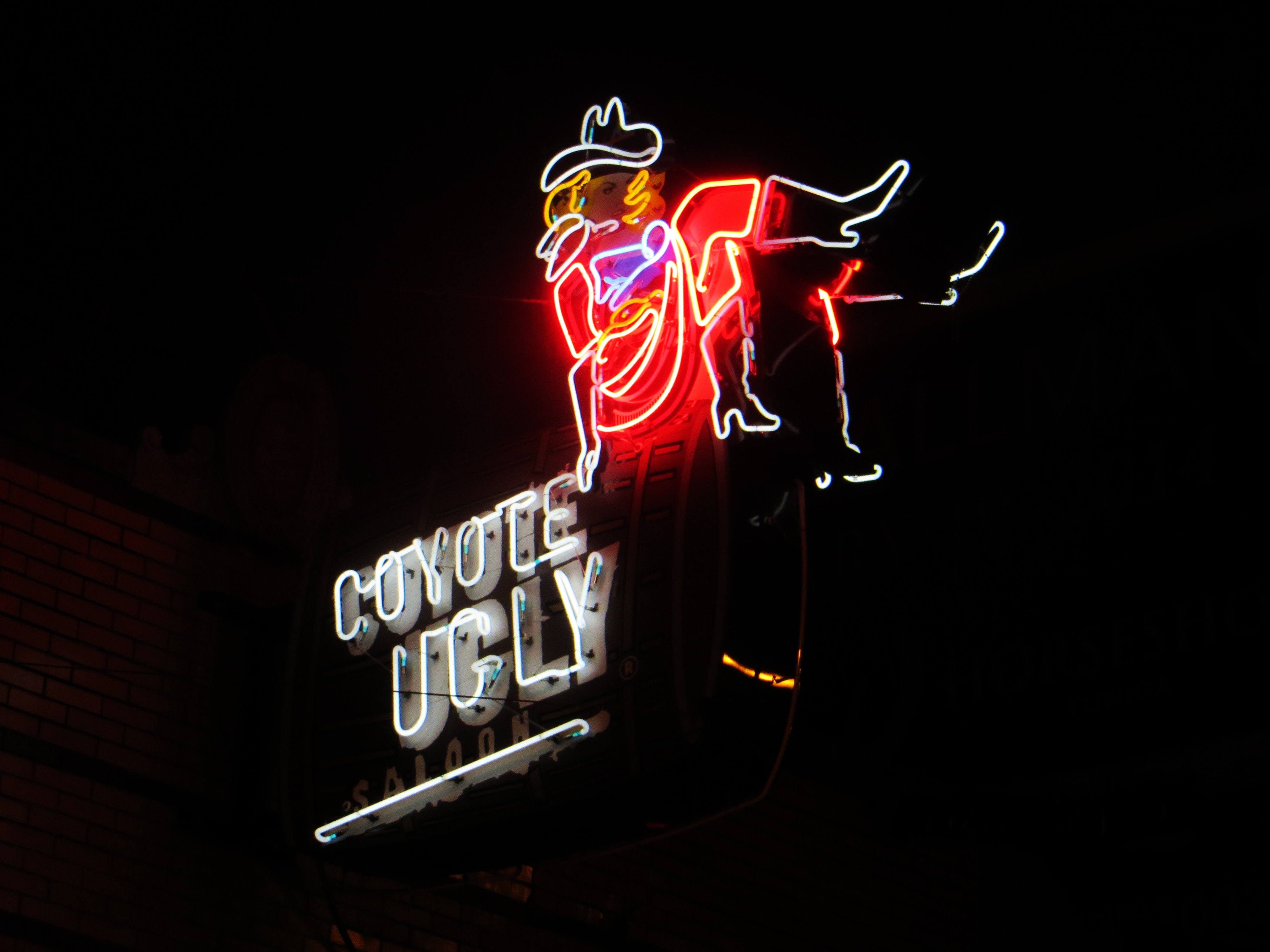 Coyote ugly neon signage photo