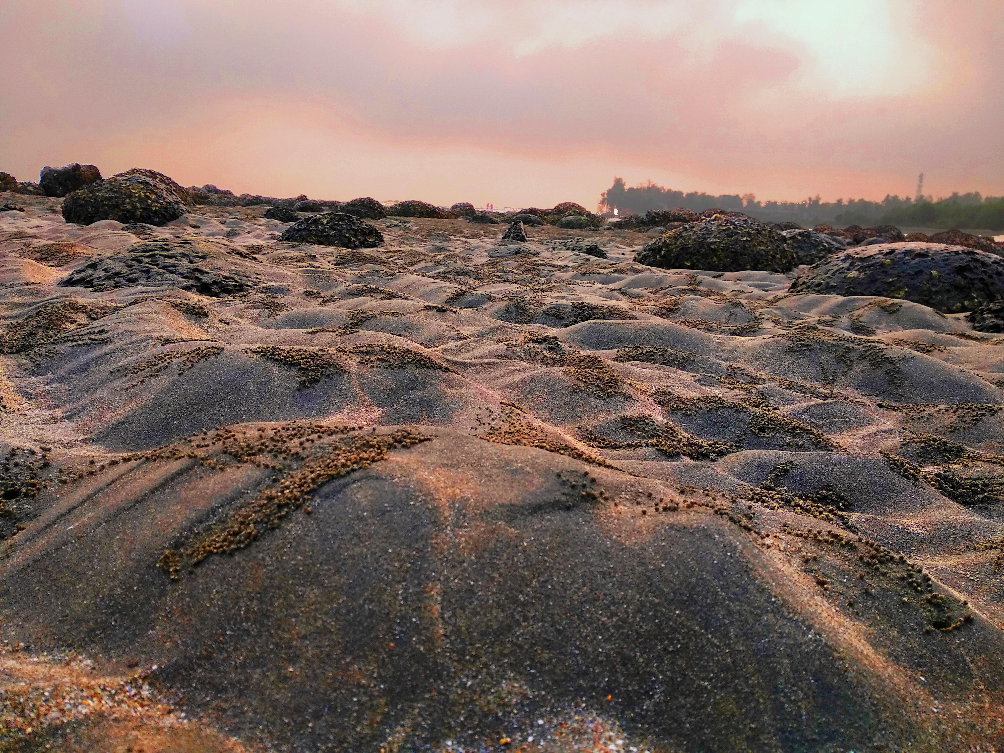 Crab holes on sea beach of saint martin's island at sunrise photo