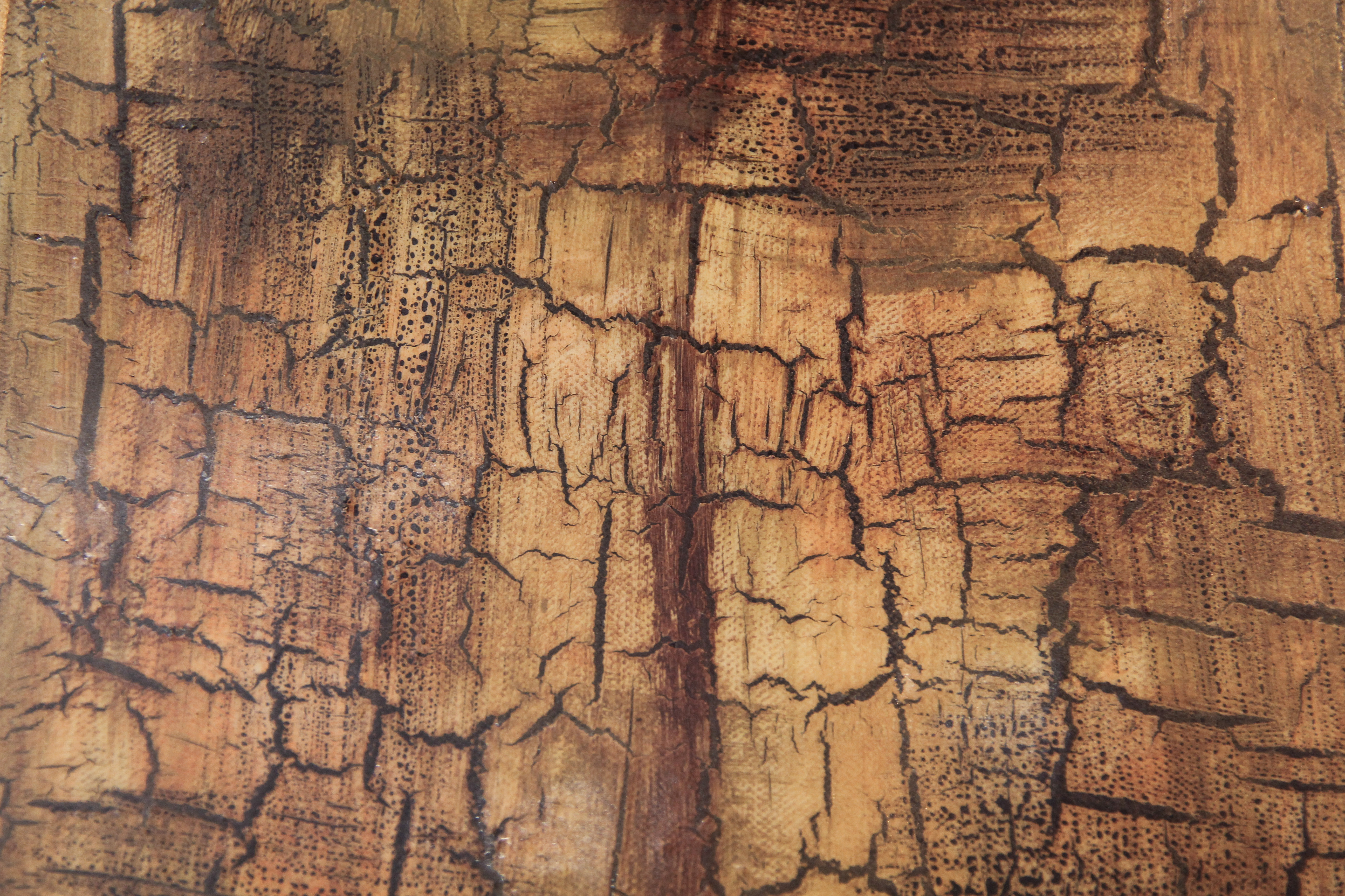 Cracked Grunge Texture paint effect chipped surface tan stain ...