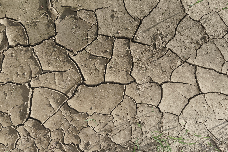 Free cracked textures | Wild Textures