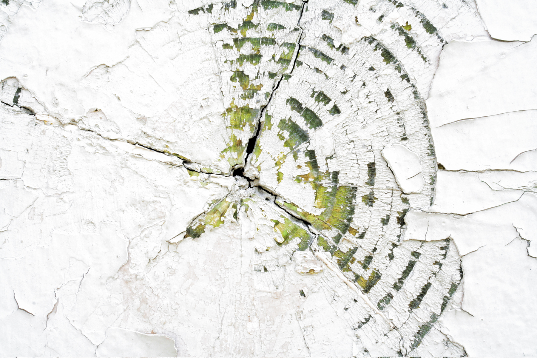 Cracked Wood Texture, Aged, Textural, Peeled, Peeling, HQ Photo