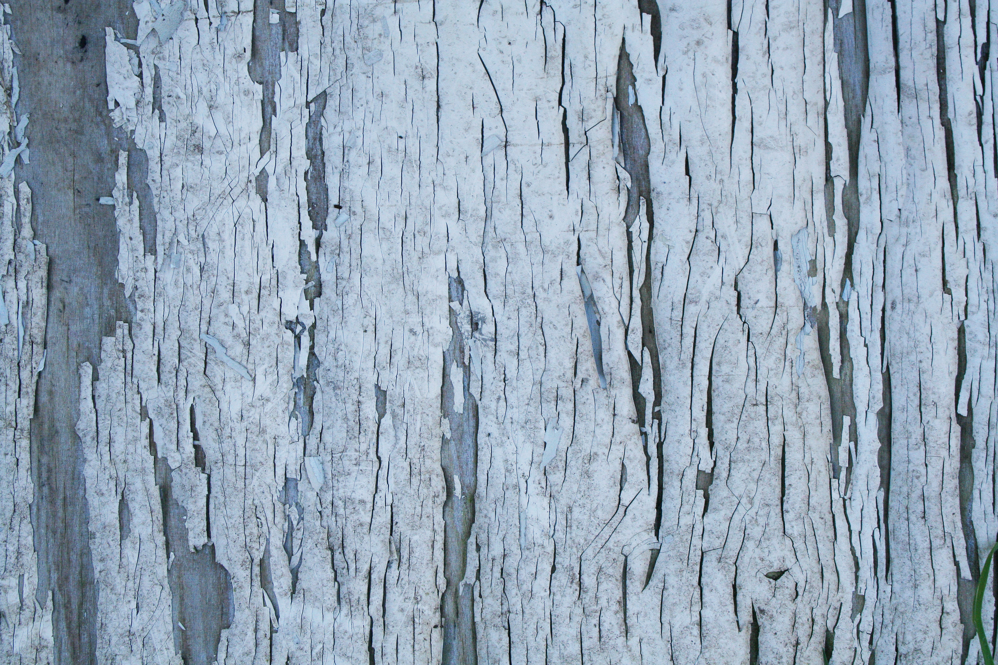 Wood texture with cracked white paint | Textures for photoshop free