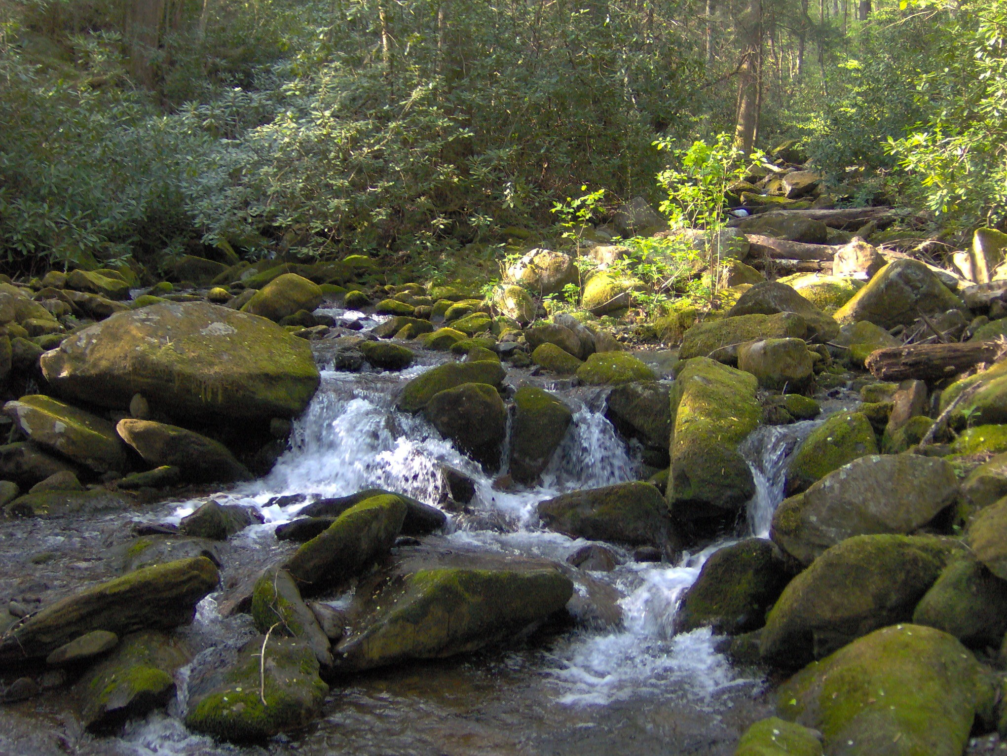 File:Rock-creek-gsmnp1.jpg - Wikimedia Commons