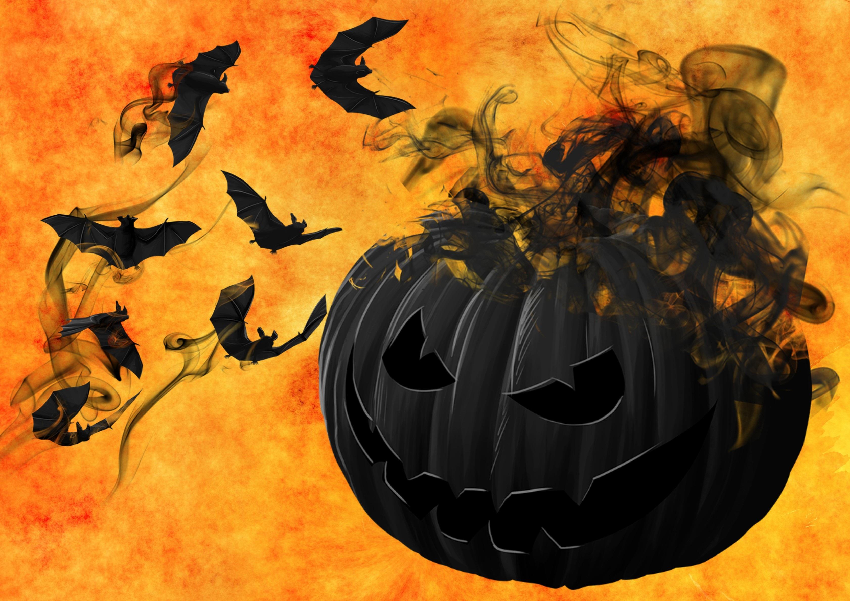 Creepy Pumpkin, Bats, Creepy, Darkness, Mystical, HQ Photo
