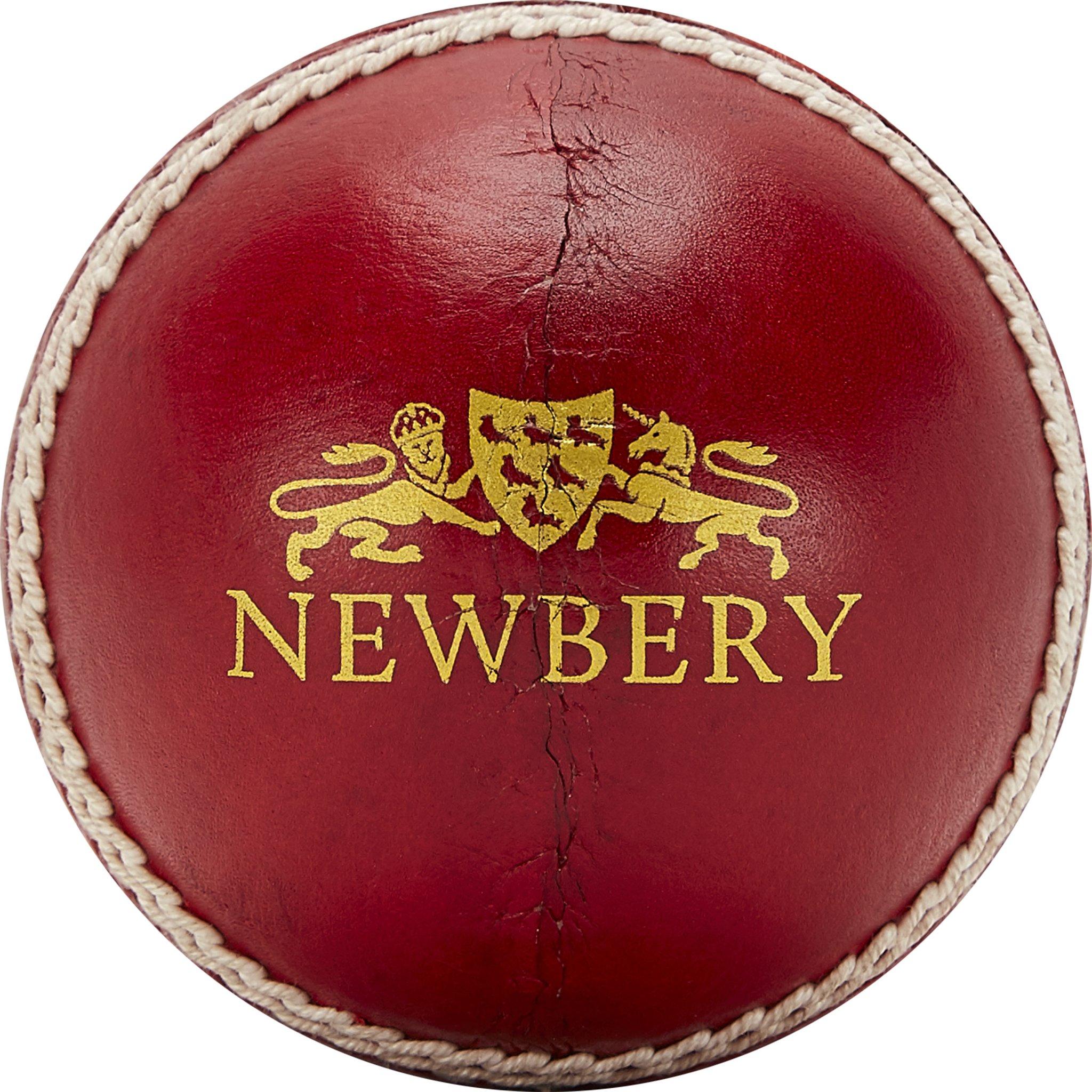 Newbery County Cricket Ball – Newbery Cricket