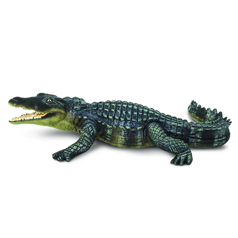 Amazon.com: Safari Ltd Wild Safari Wildlife Crocodile: Toys & Games