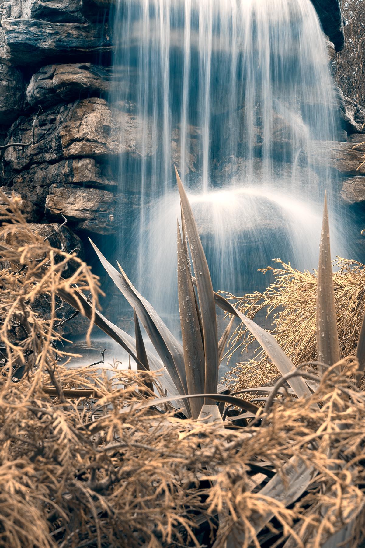 Cross-processed waterfall foliage - hdr photo