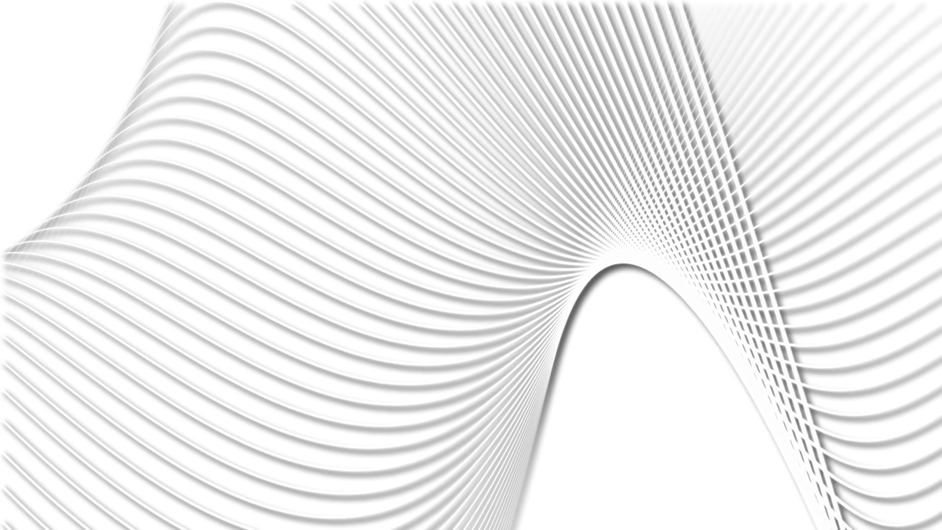 curved black lines white background Stock Video Footage - Videoblocks