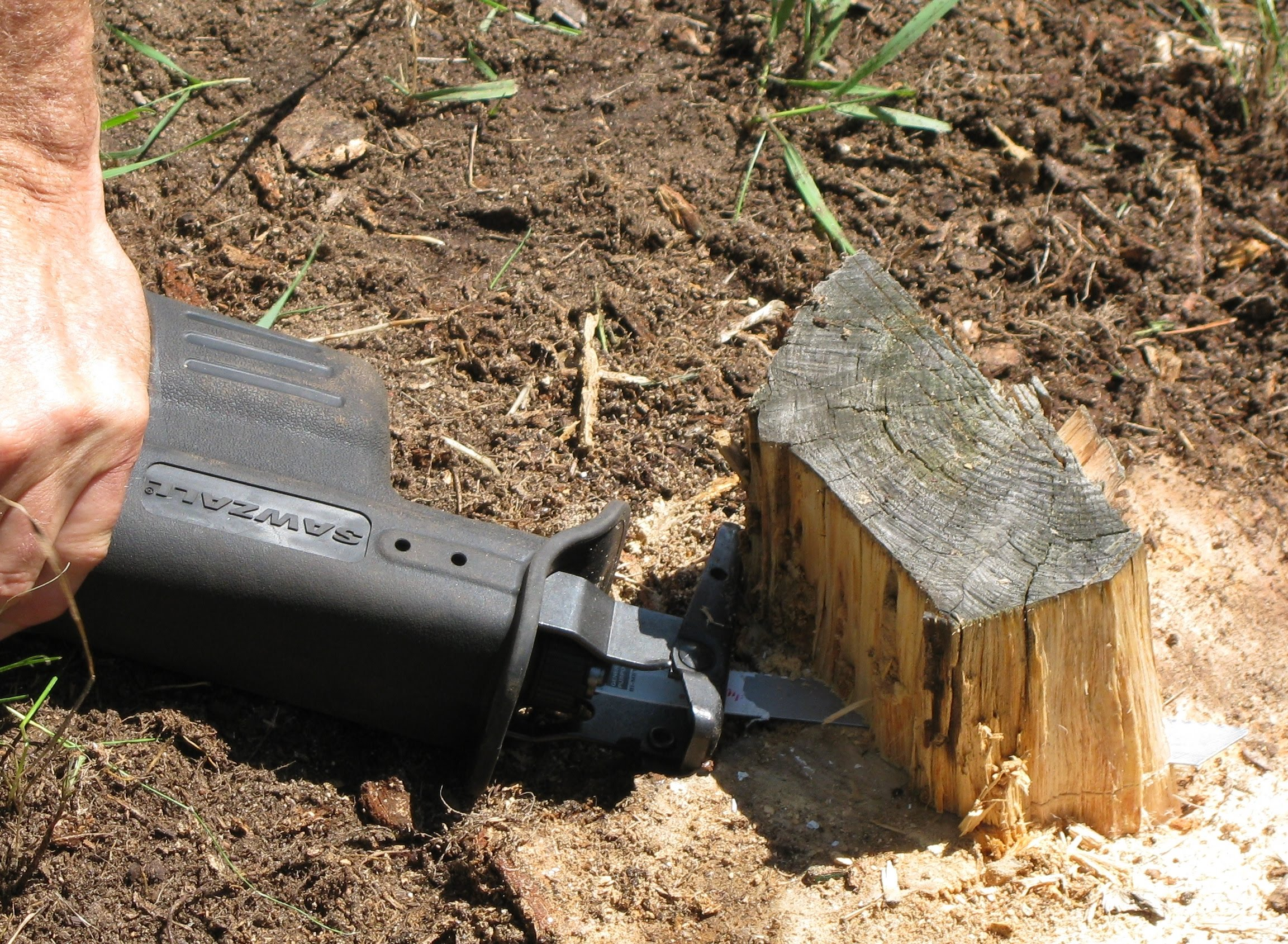 An alternative to stump removal: How to flush cut a stump - YouTube