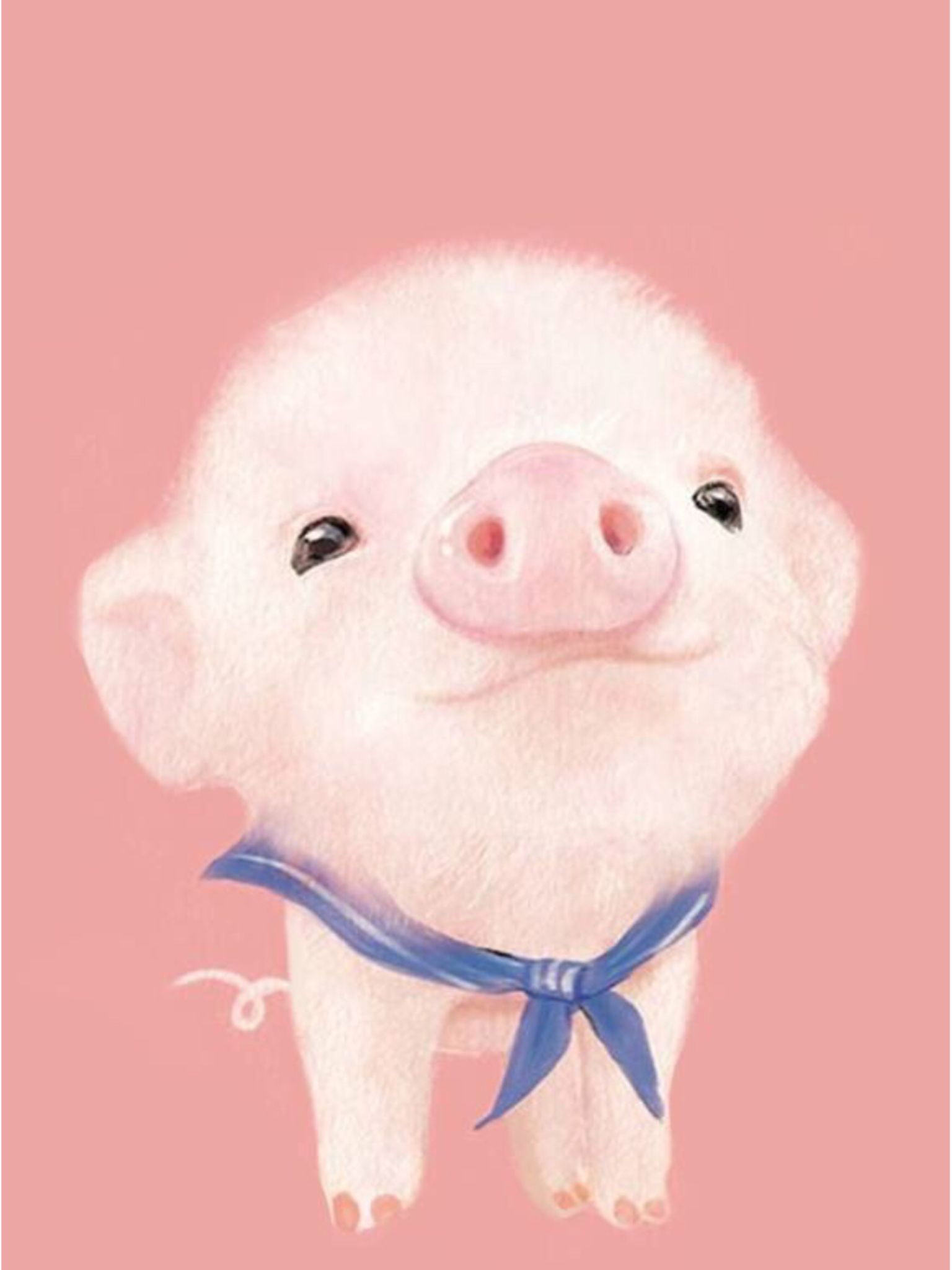 Cute pig wallpaper | Wallpapers | Pinterest | Pig wallpaper ...