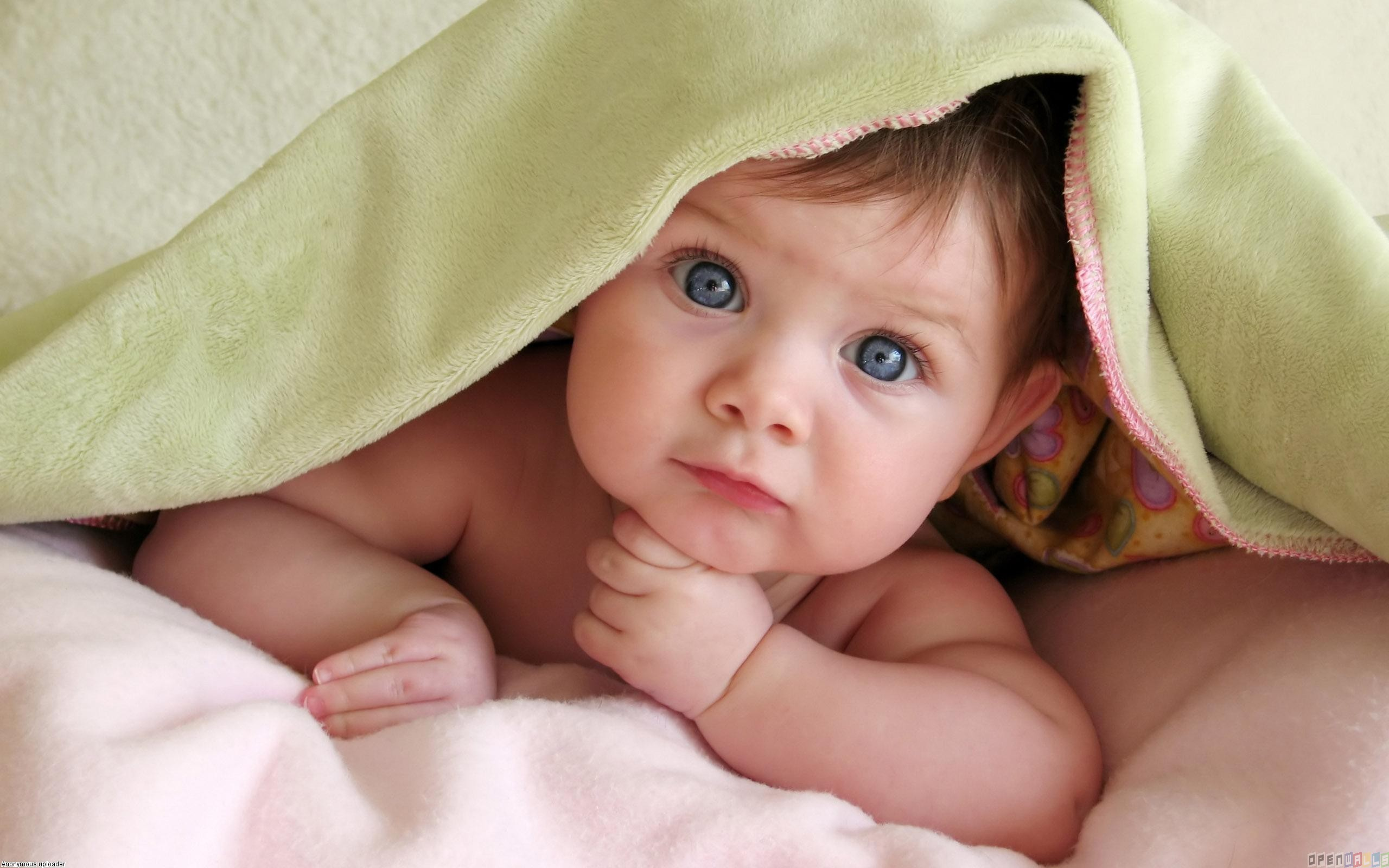 free photo: cute baby - young, smile, cute - non-commercial - free