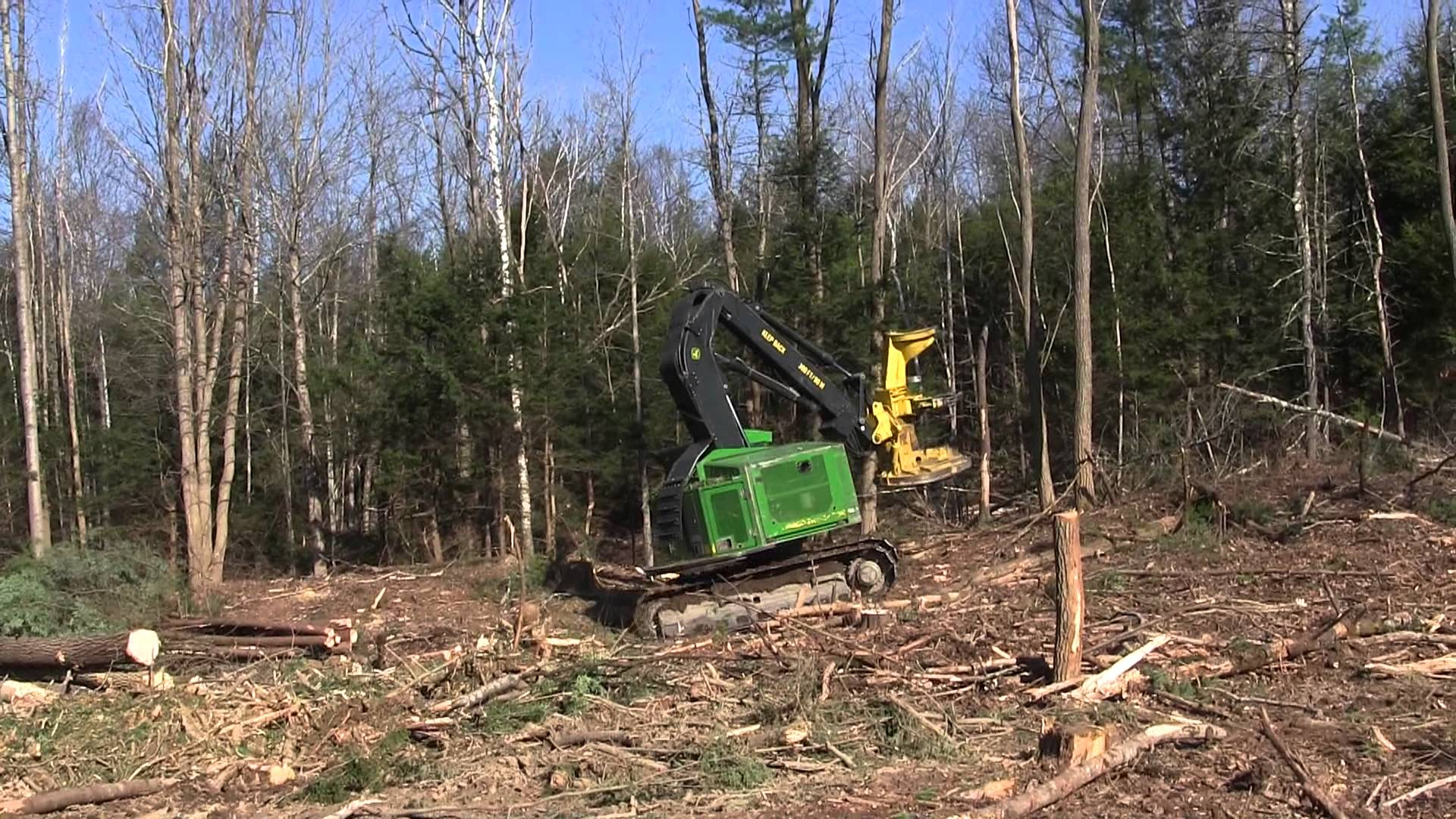 Deere 753J Feller Buncher Cutting Trees - YouTube