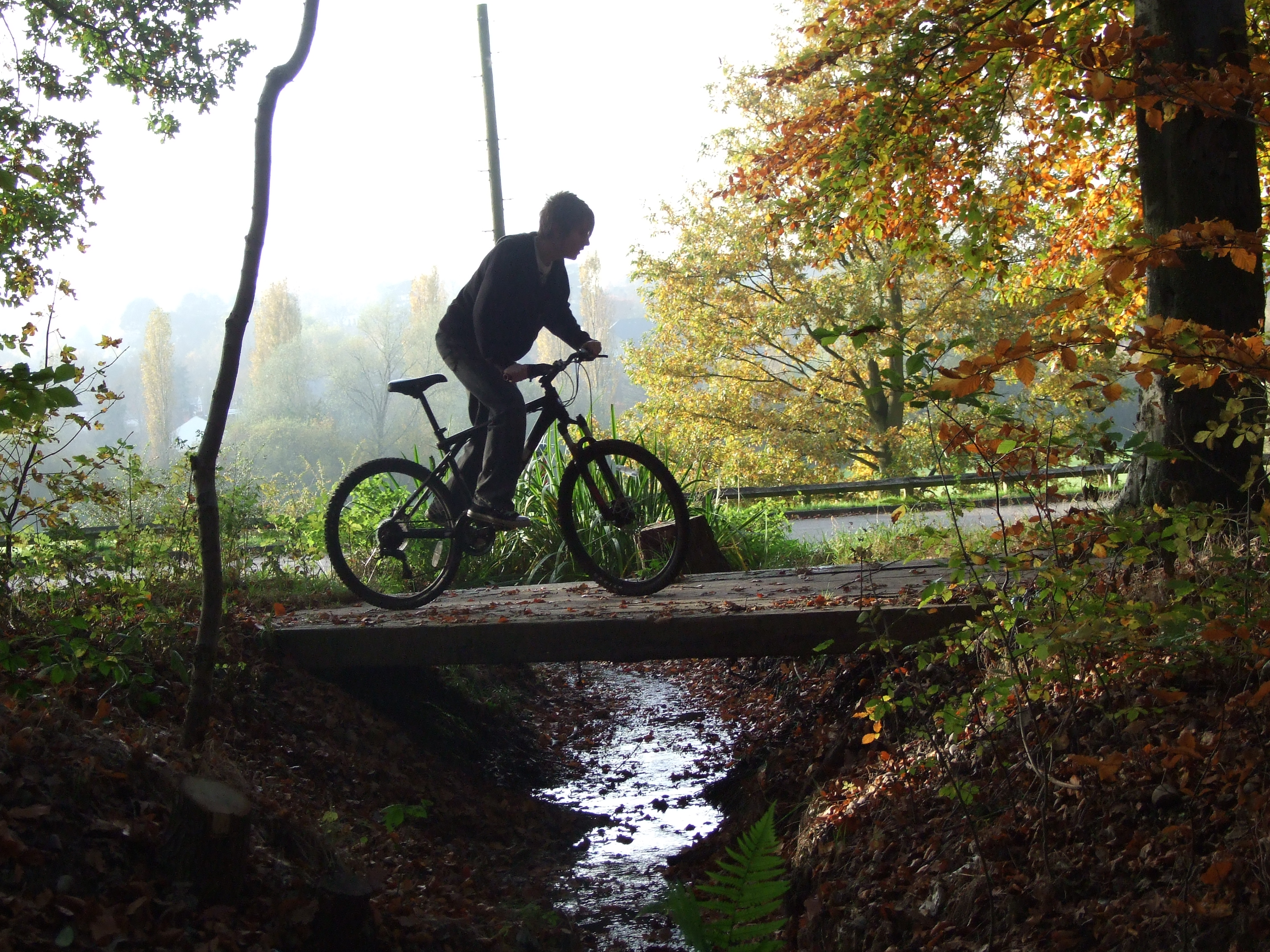Cycling through the forest, Bike, Boy, Bridge, Cycling, HQ Photo