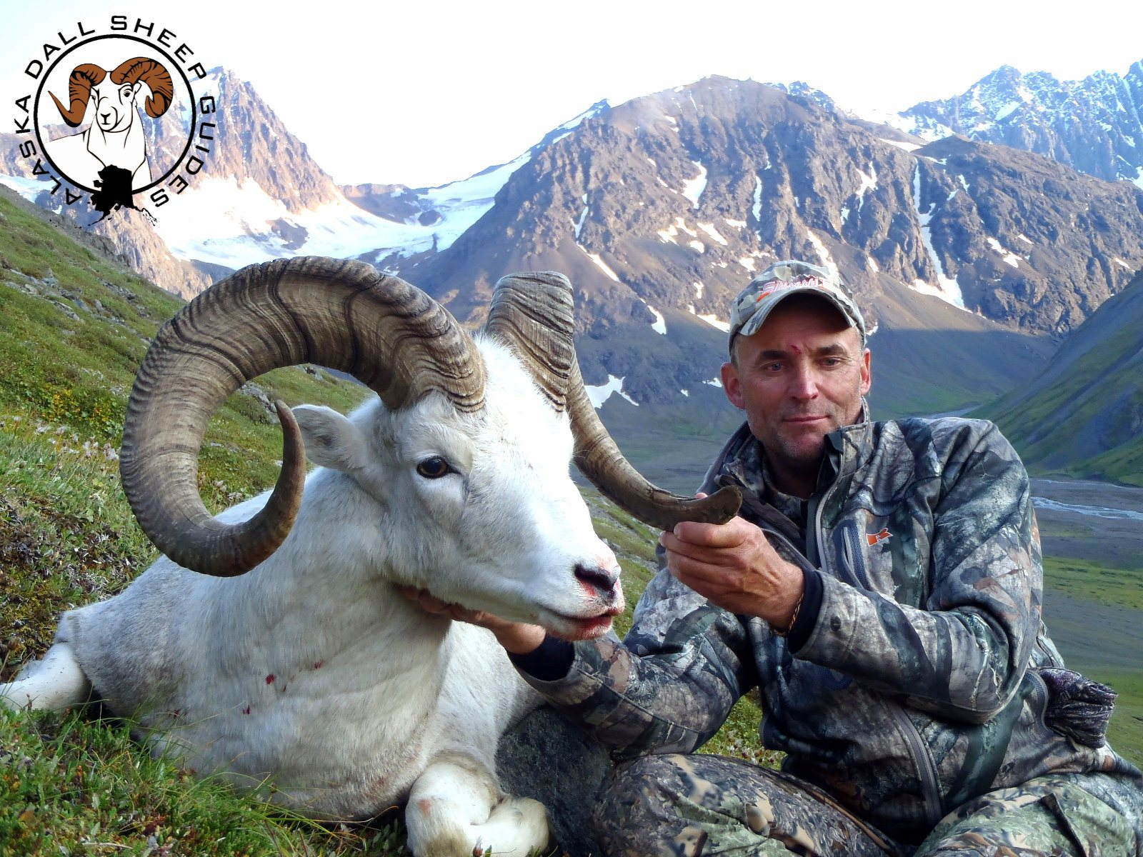 Alaska Dall Sheep Guides