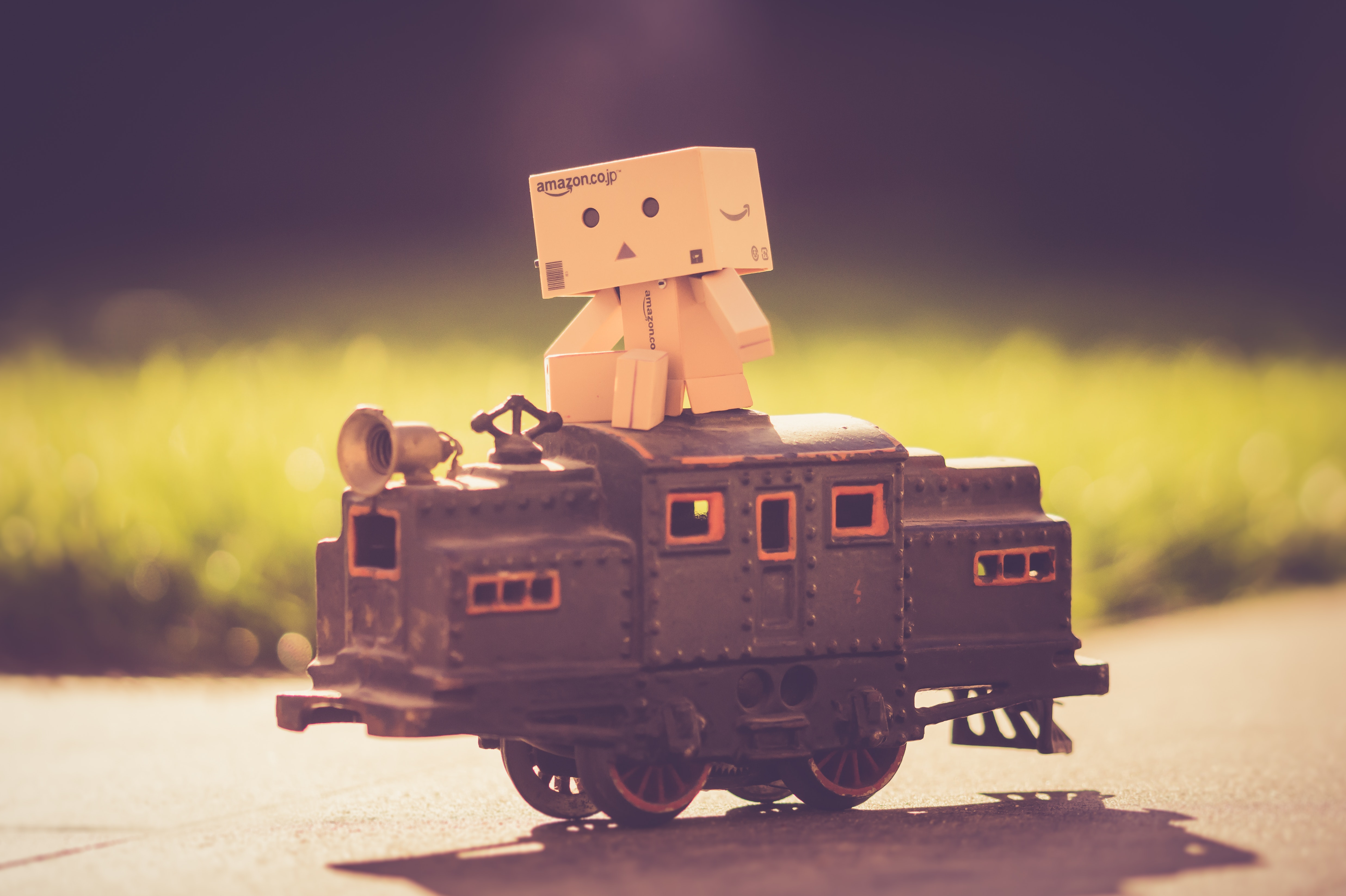 Danboard on top of toy train photo