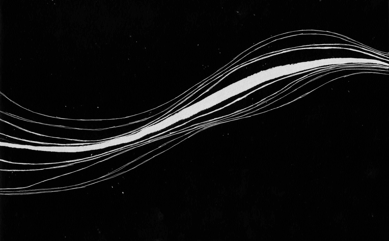 Danijel Šivinjski: blind fields __ slijepa polja photo
