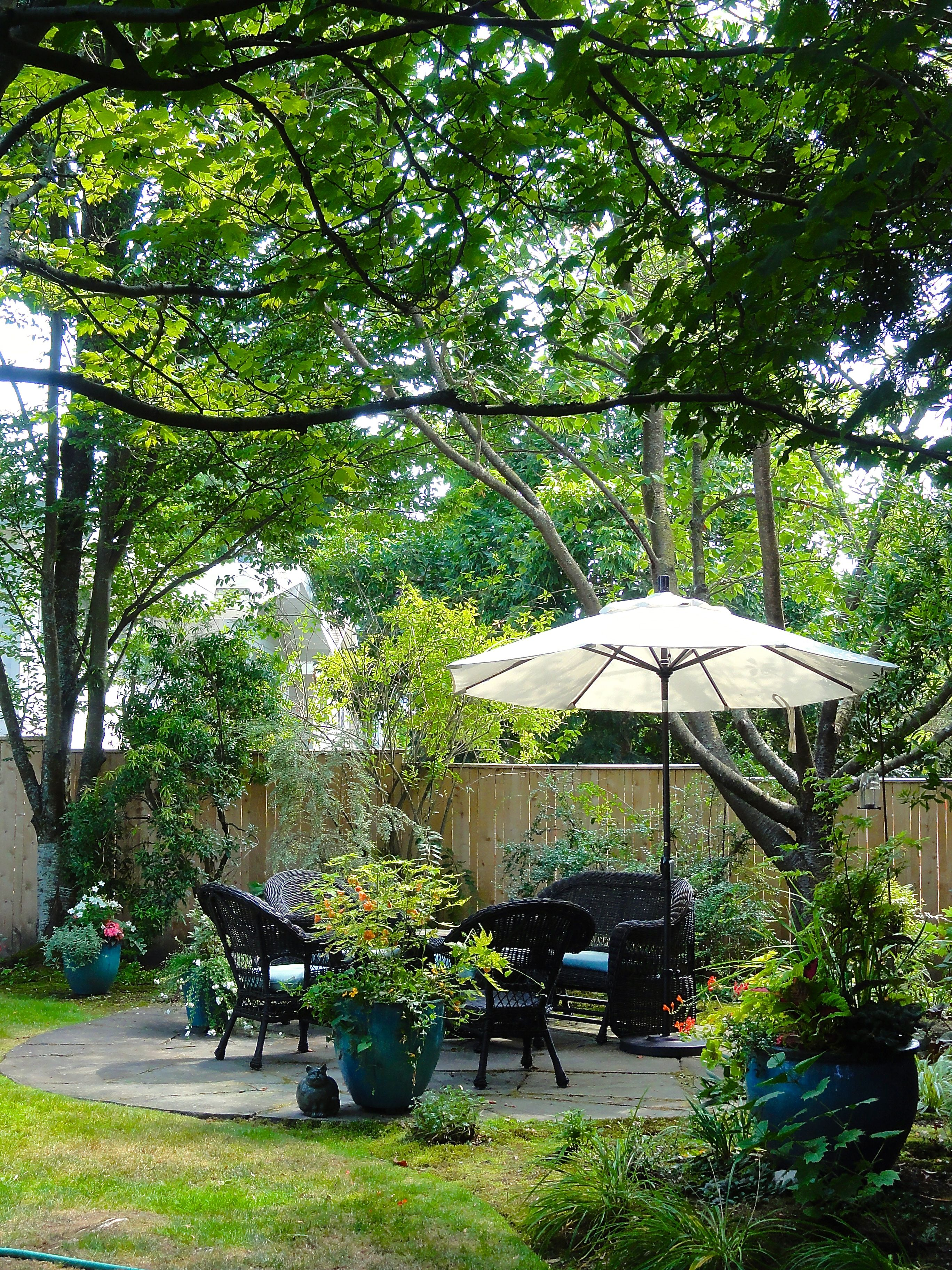 Dappled shade garden with umbrella so owner can stay dry in the warm ...