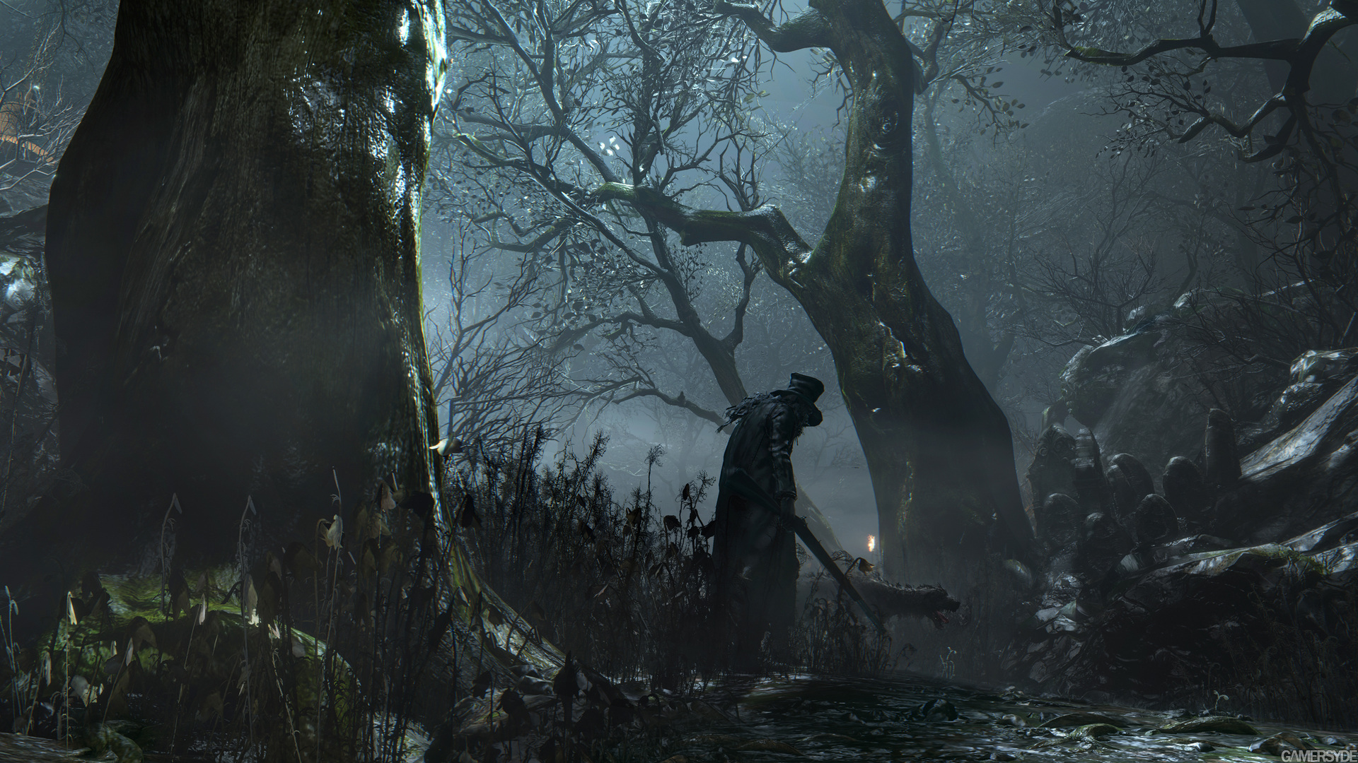Image - Dark forest 2.jpg | Bloodborne Wiki | FANDOM powered by Wikia