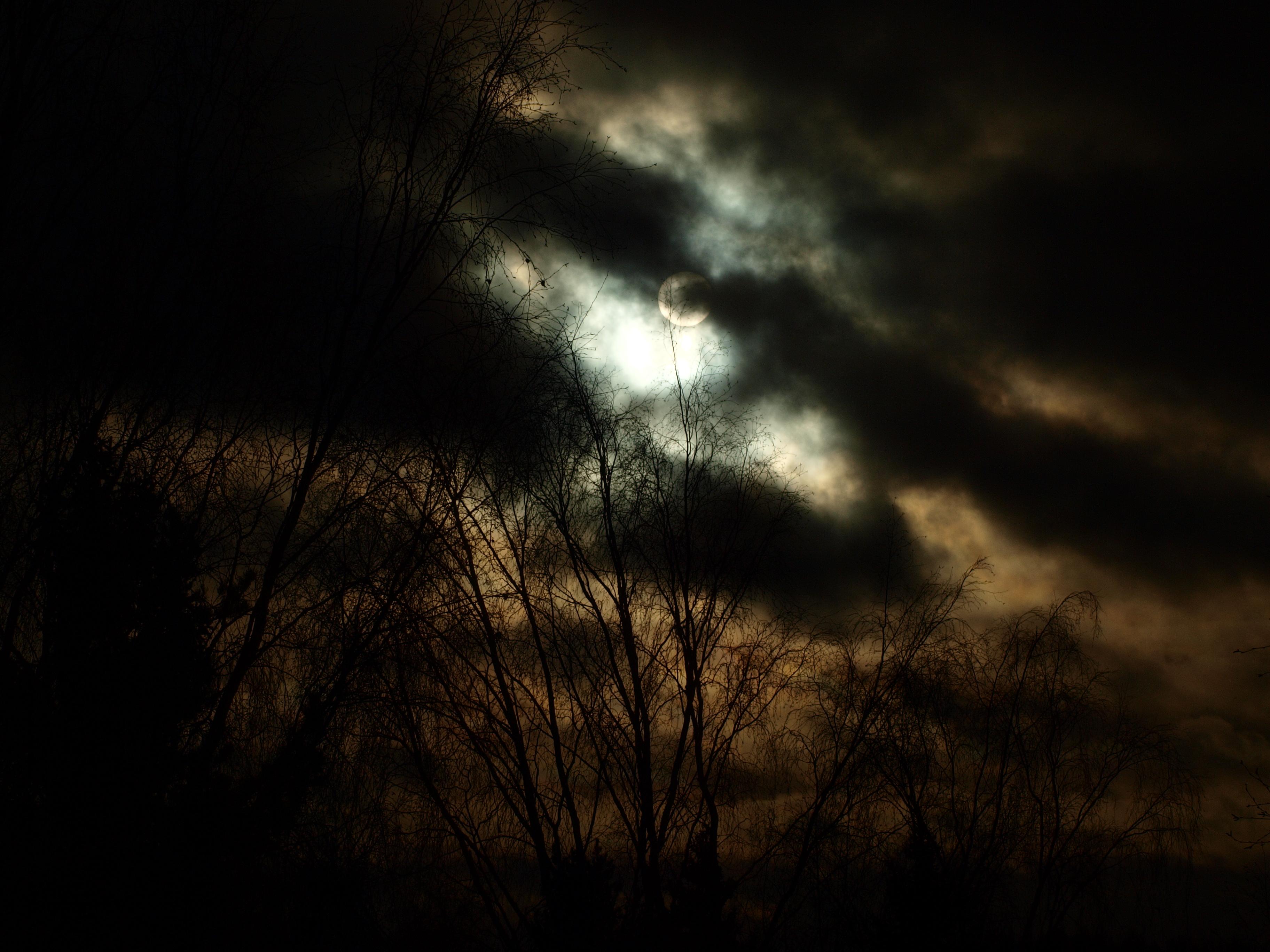 Dark sun photo