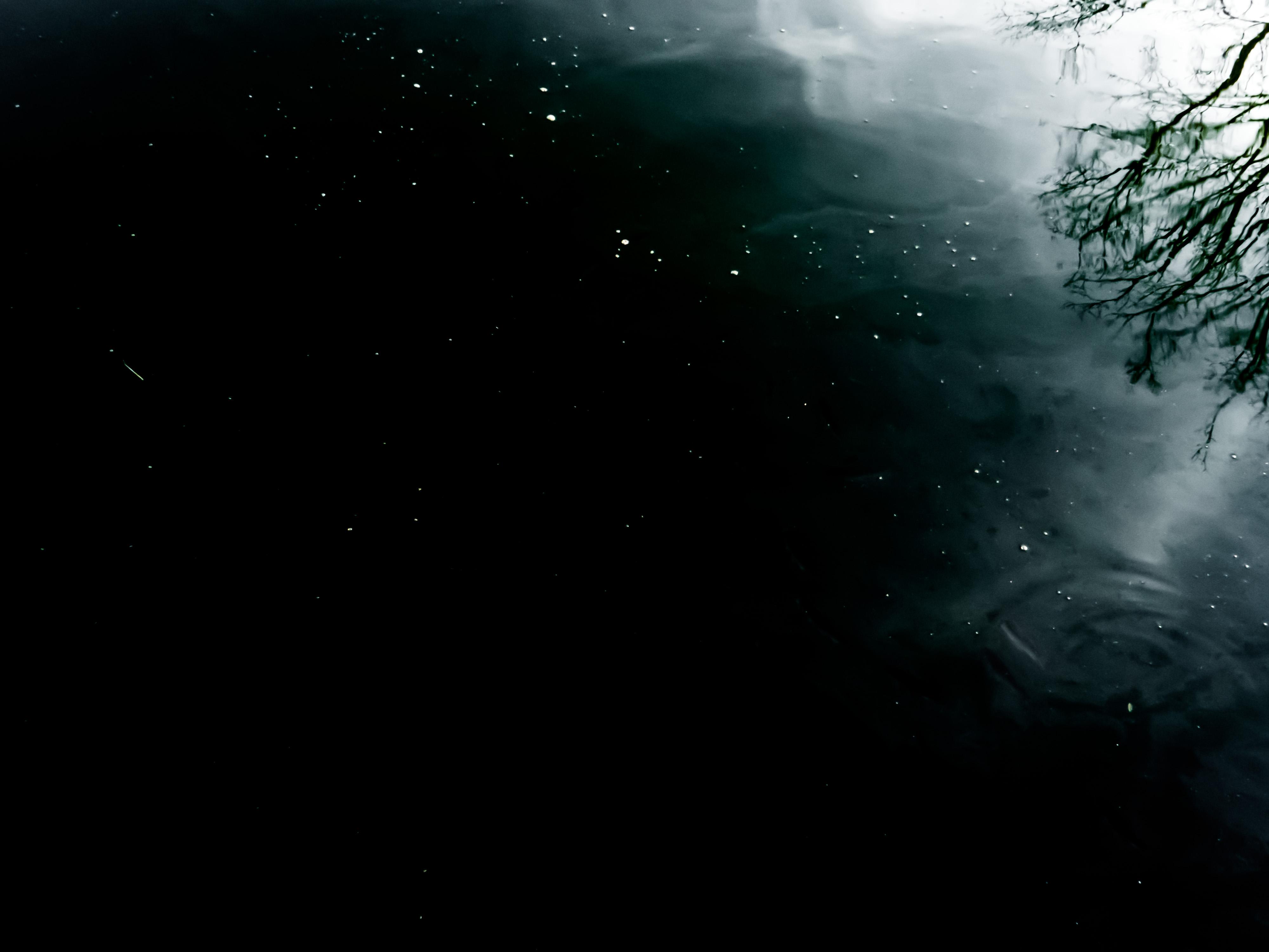 Dark water, Beautiful, Black, Dark, Nature, HQ Photo