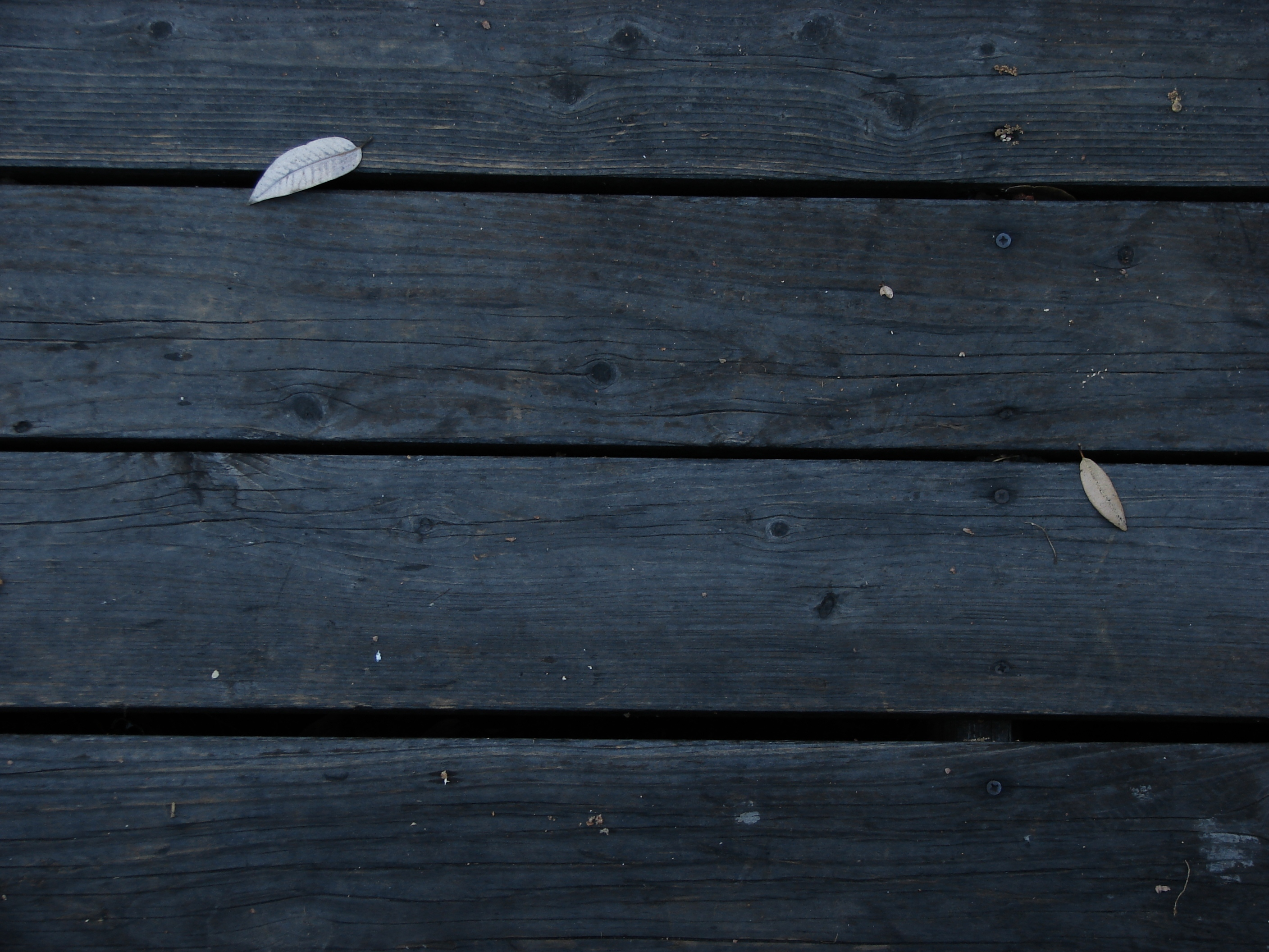 Dark Wooden Boards, Autumn, Grave, Wood, Tomb, HQ Photo