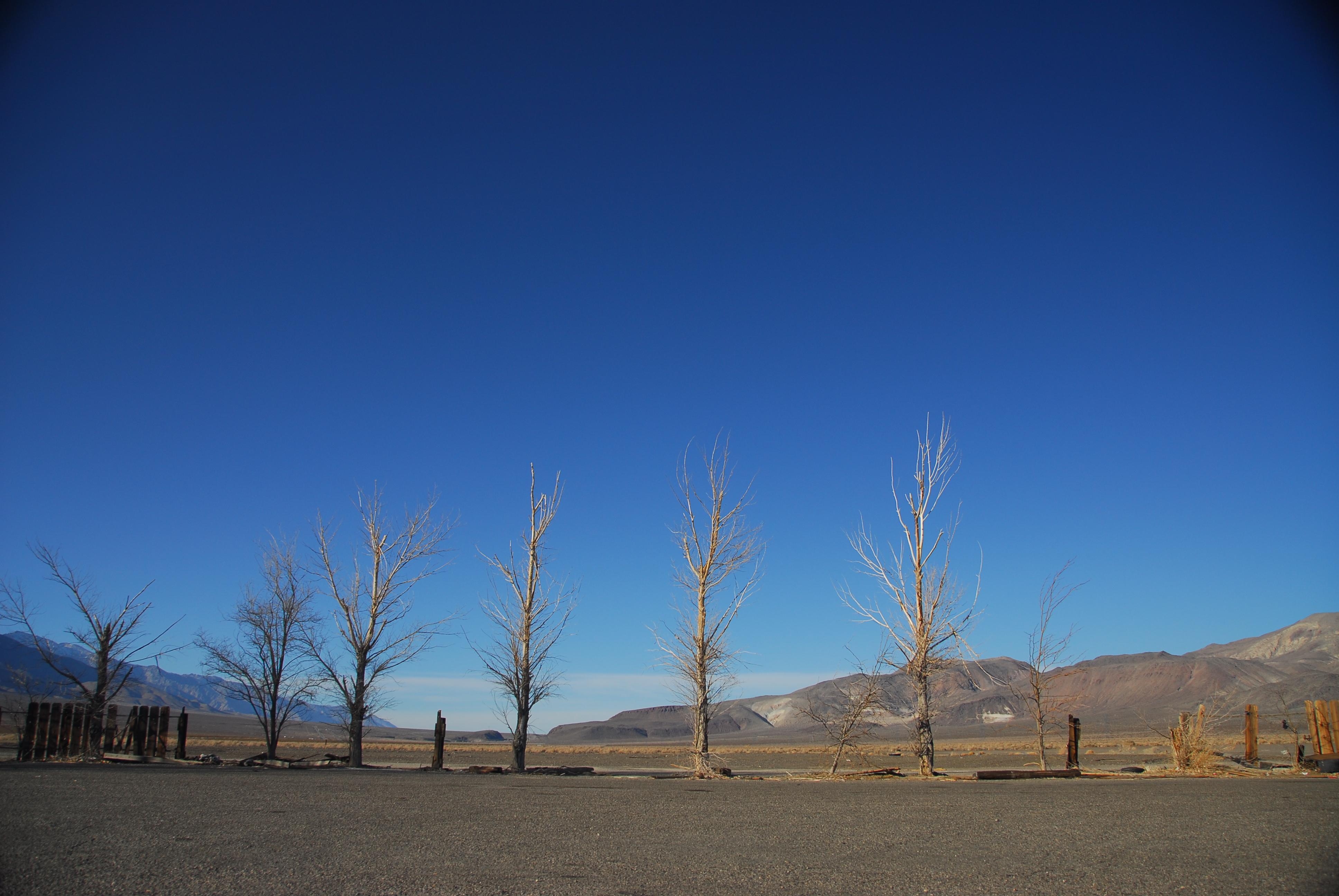 Death valley photo