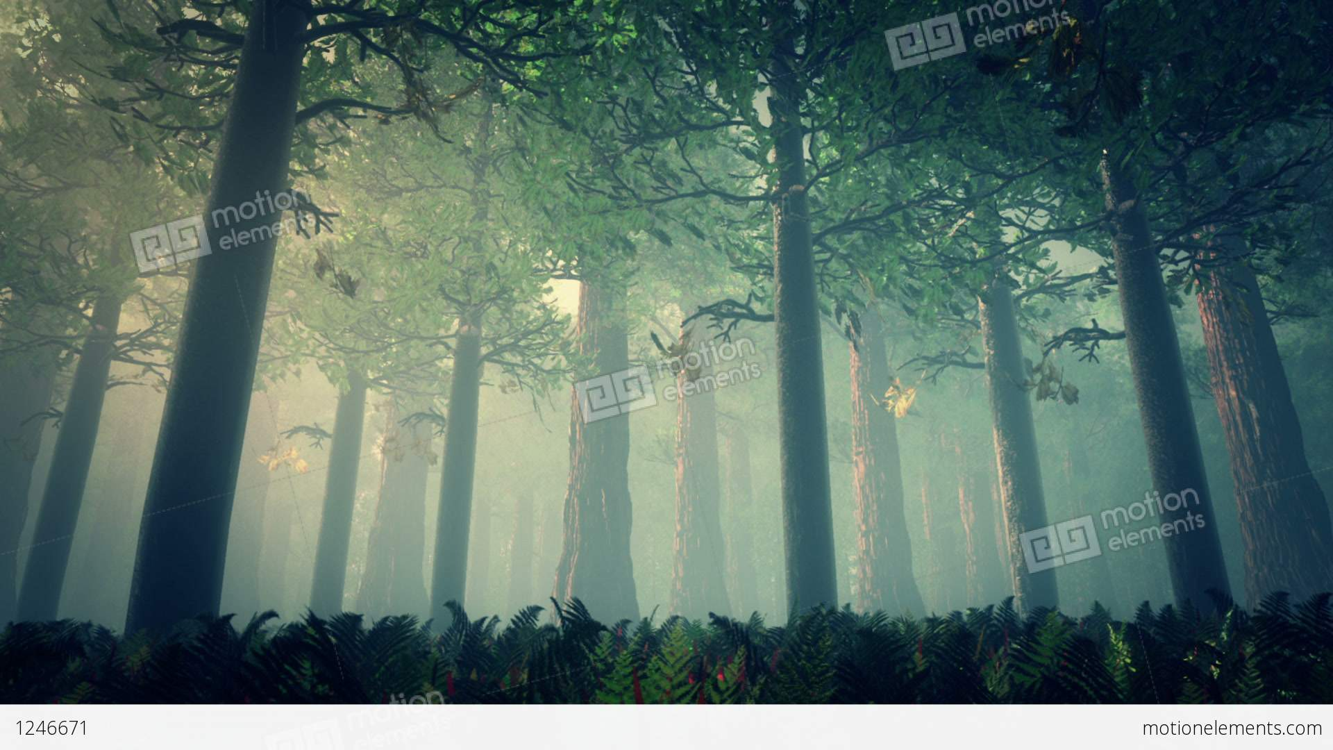 Deep Forest Fairy Tale Scene 3D Render Stock Animation | 1246671