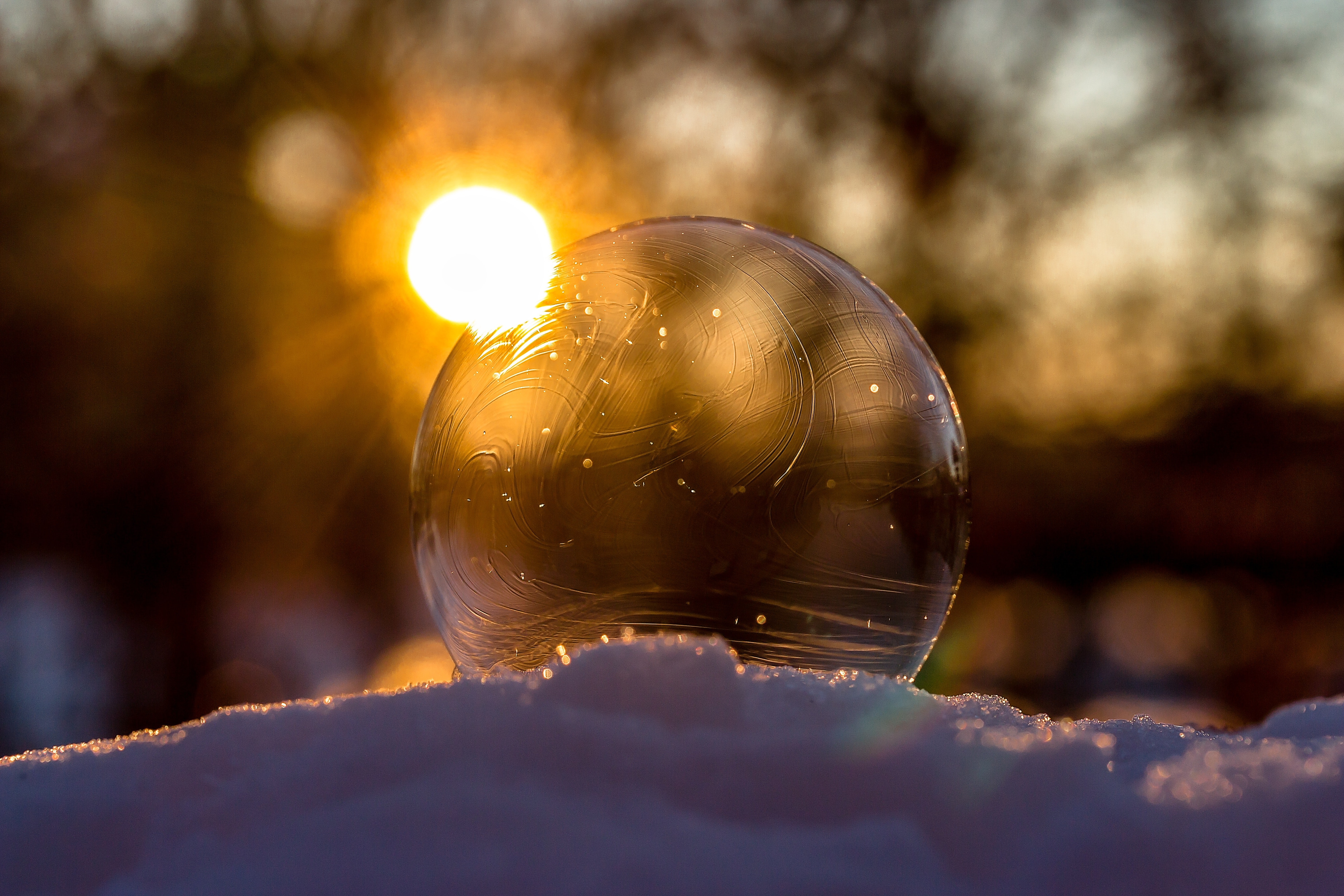 Defocused Image of Sun Reflecting in Water, Ball, Outdoors, Transparent, Sunbeam, HQ Photo