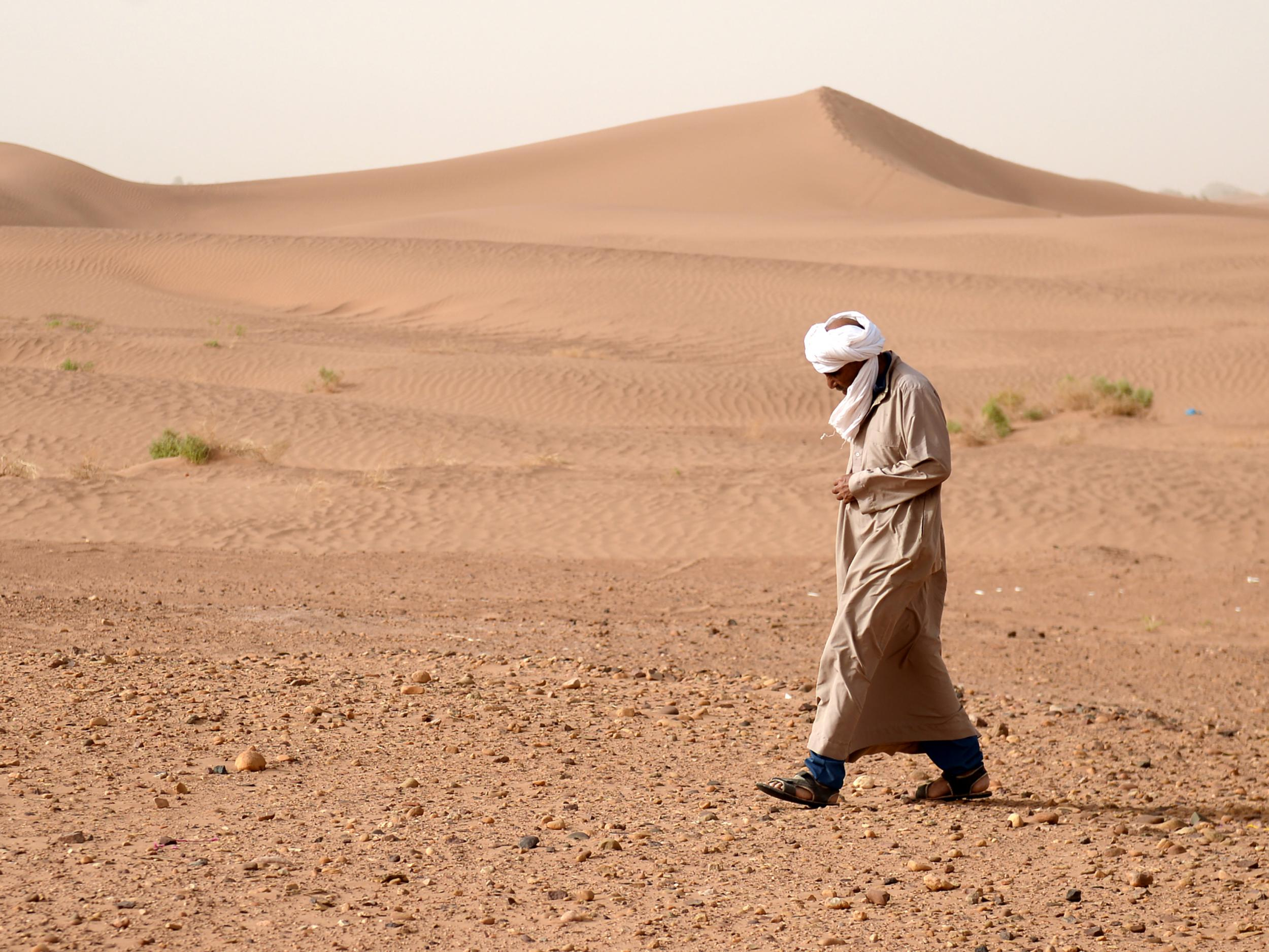 World's largest desert has grown even larger due to climate change ...