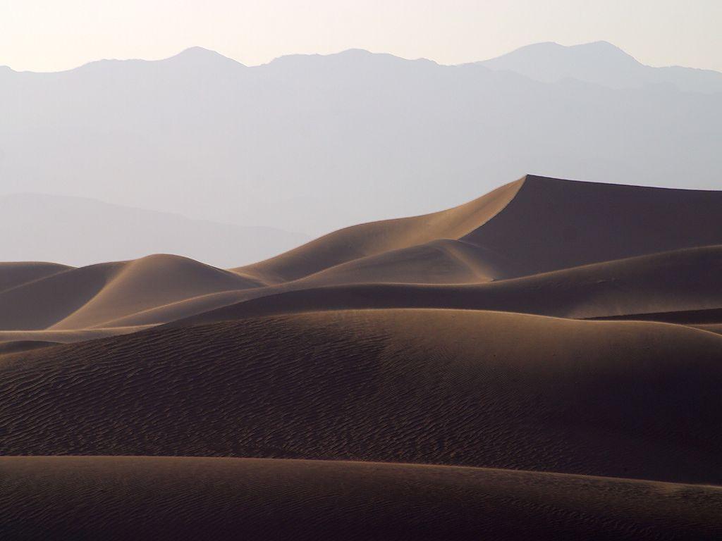 Desert Landscape, Desert, Dry, Dunes, Landscape, HQ Photo