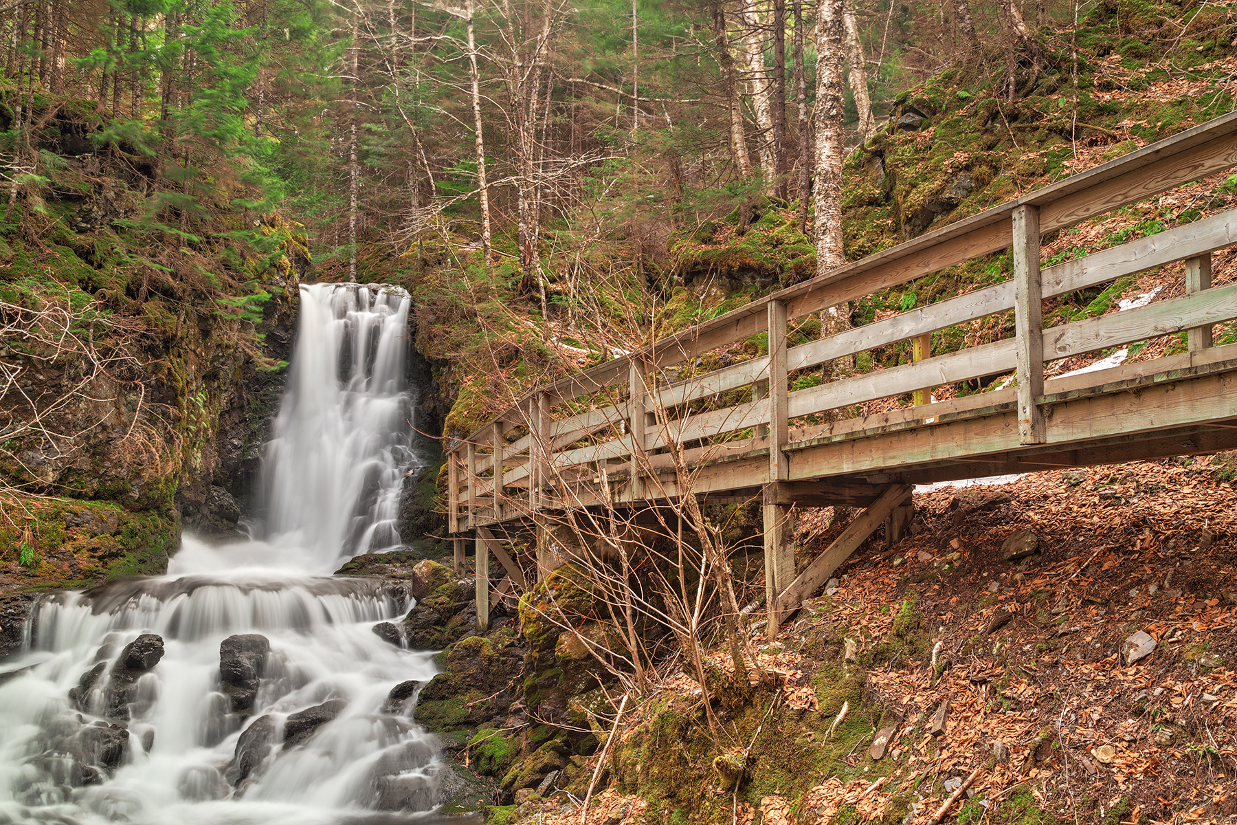 Dickson Boardwalk Falls - HDR, Adventure, Plant, Rocks, Rock, HQ Photo