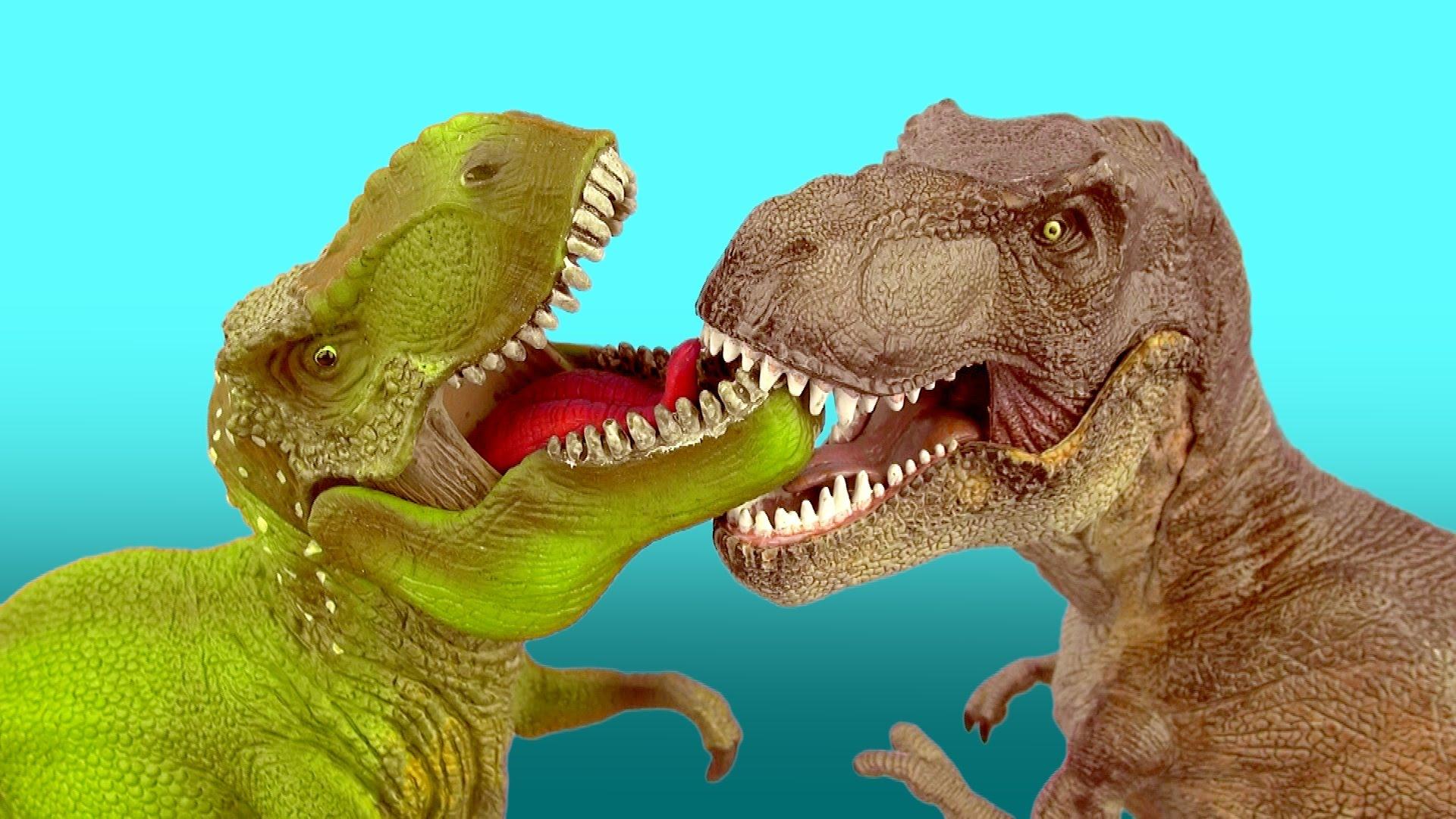 Observe a dinosaur
