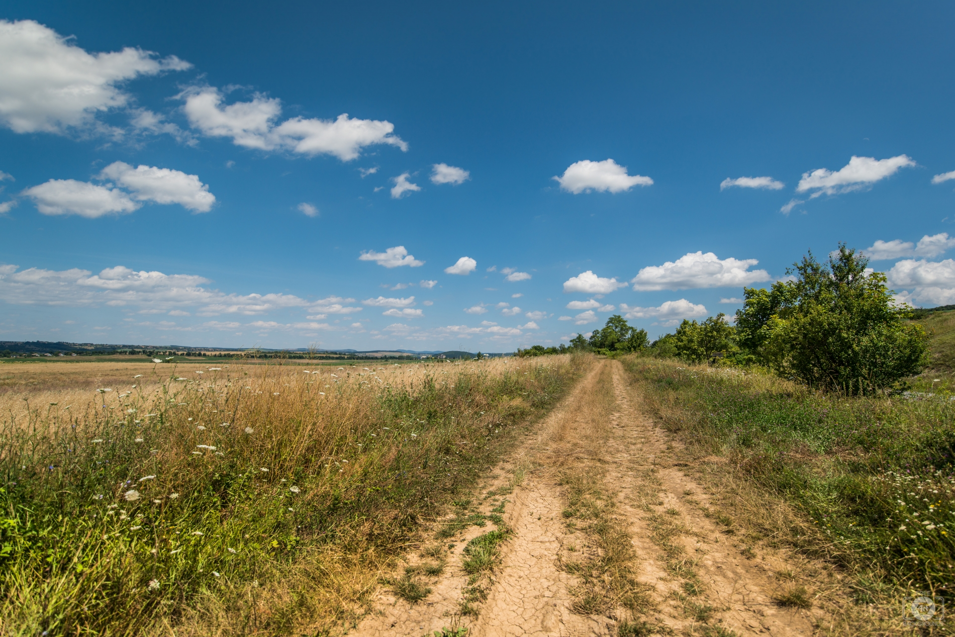 Countryside Dirt Road Background - High-quality Free Backgrounds
