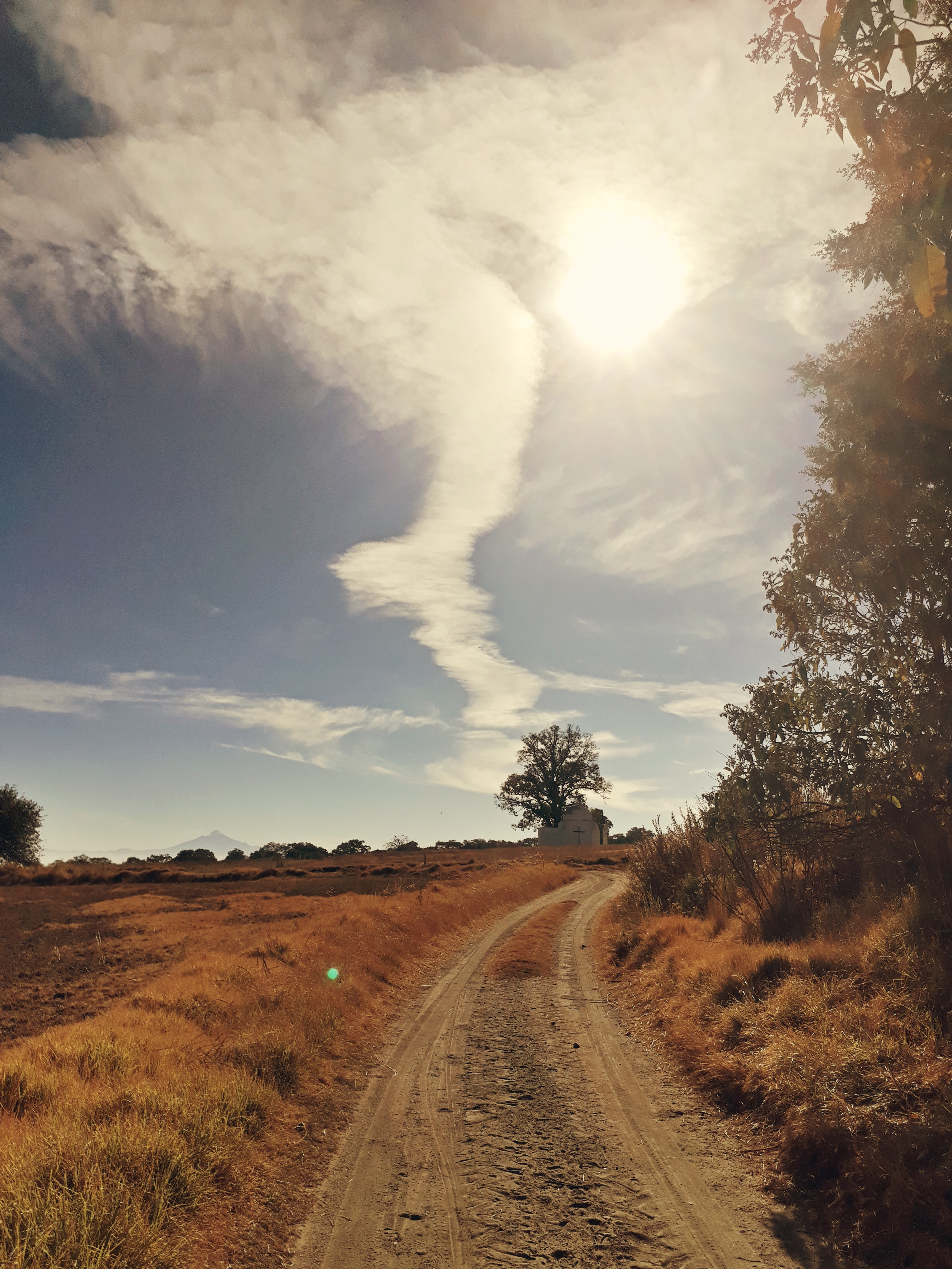 Dirt Road, Countryside, Grass, Guidance, Nature, HQ Photo
