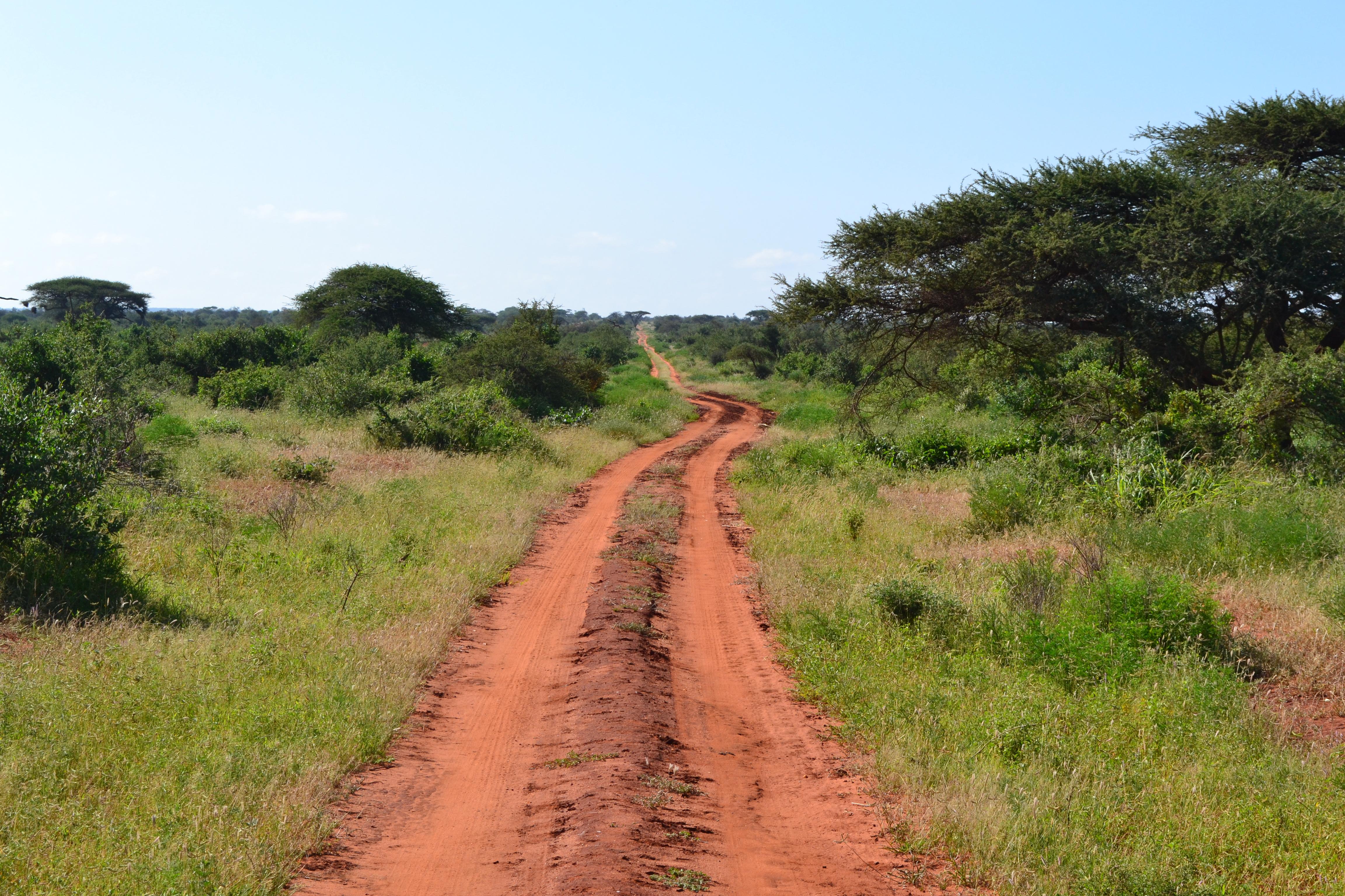File:Dirt road facing south near the Voyager Ziwani Safari Camp, on ...