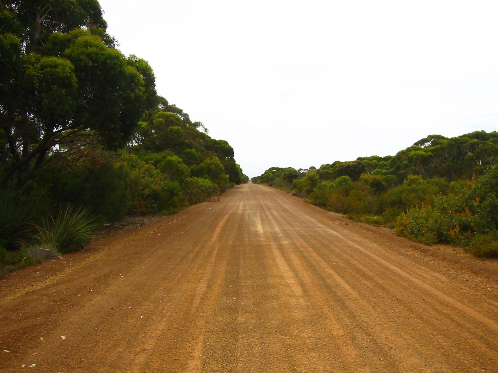 File:Dirt Road SA.JPG - Wikimedia Commons