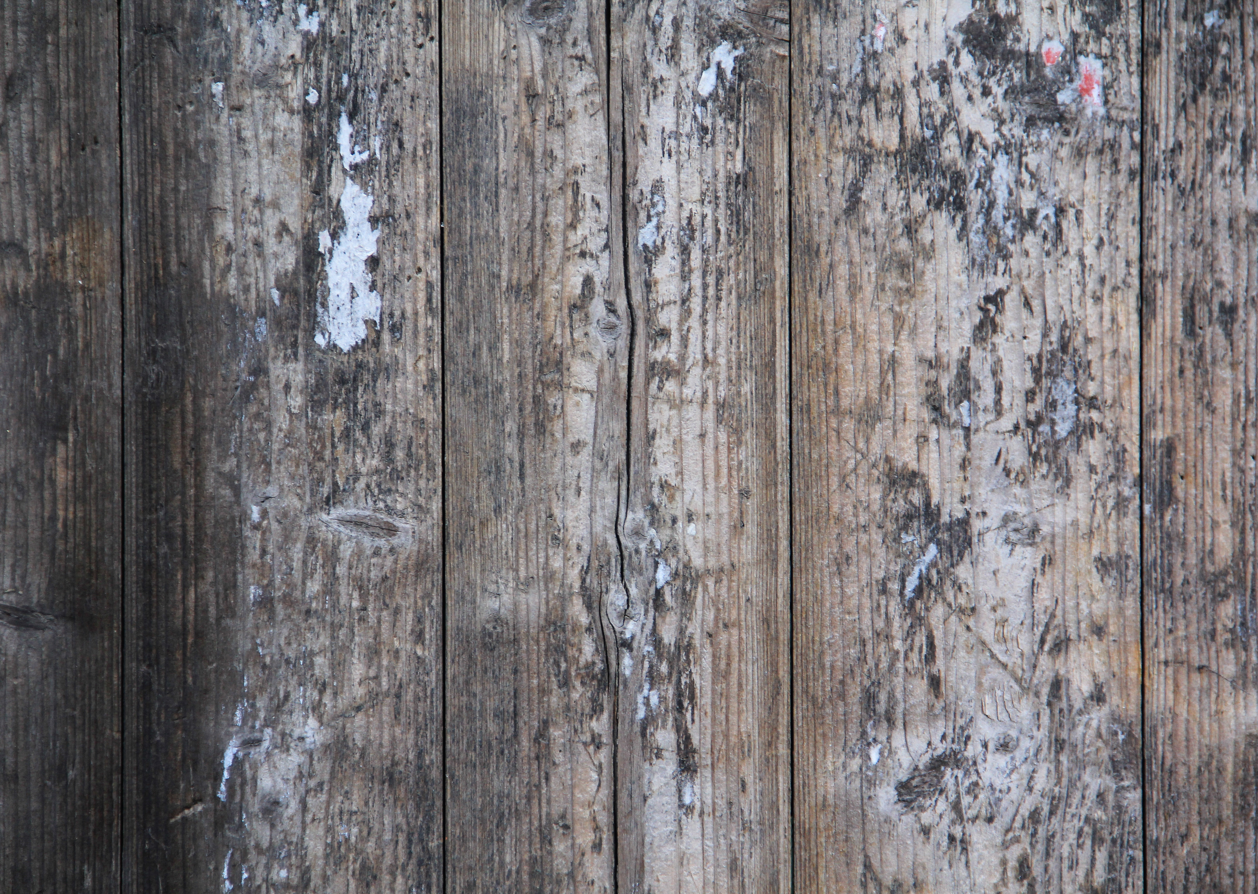 Grungy wood texture photo