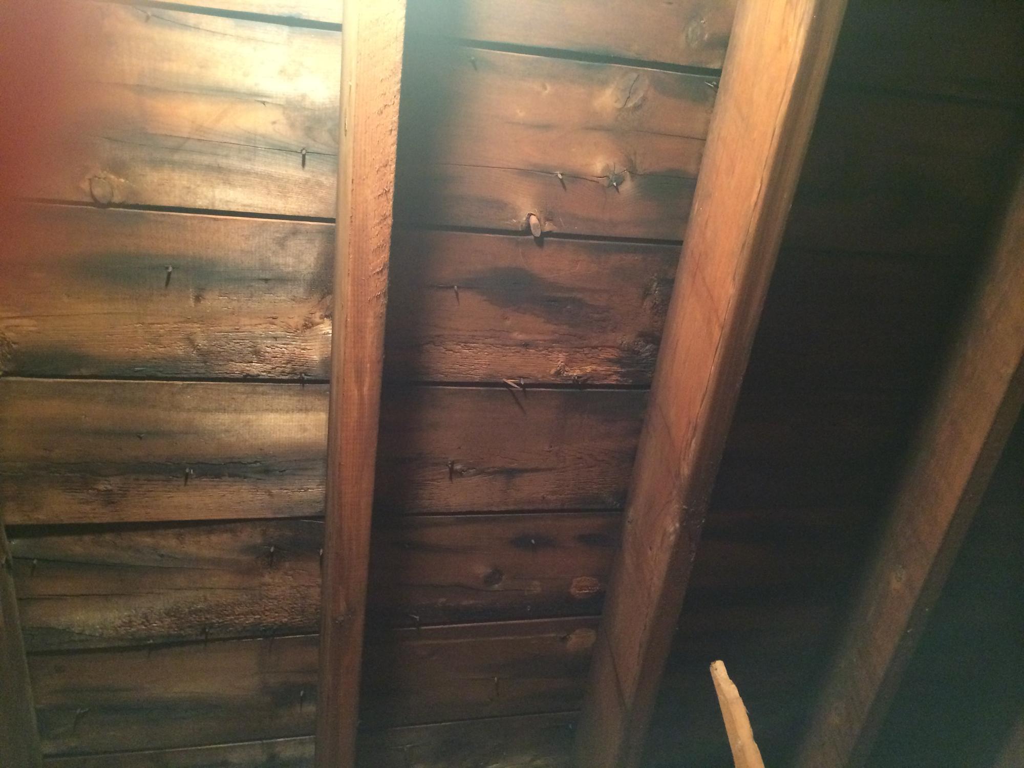 Discoloured wood photo