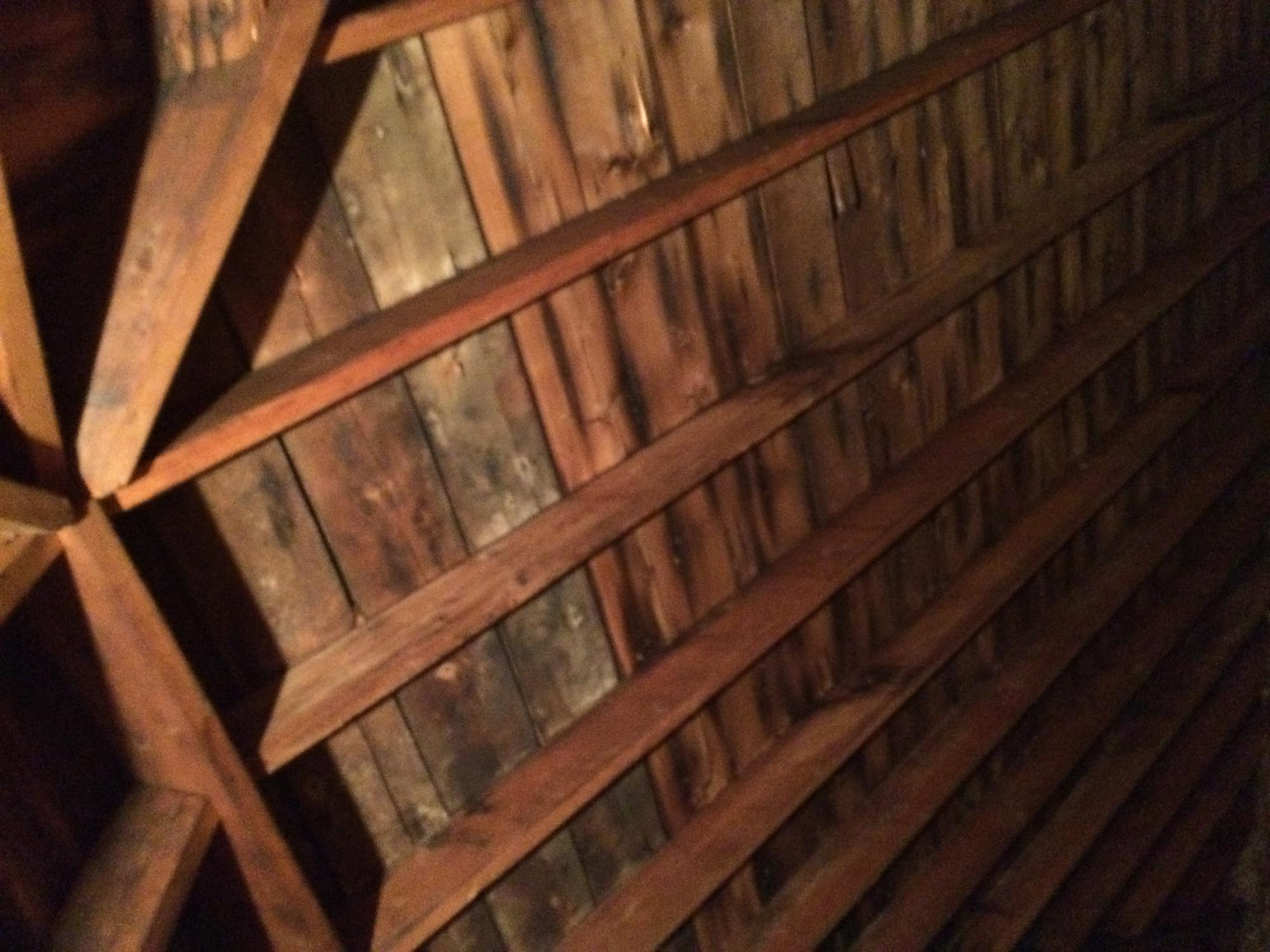 Is this Mold or Discoloration? Or Rooted Wood attic... - InterNACHI ...