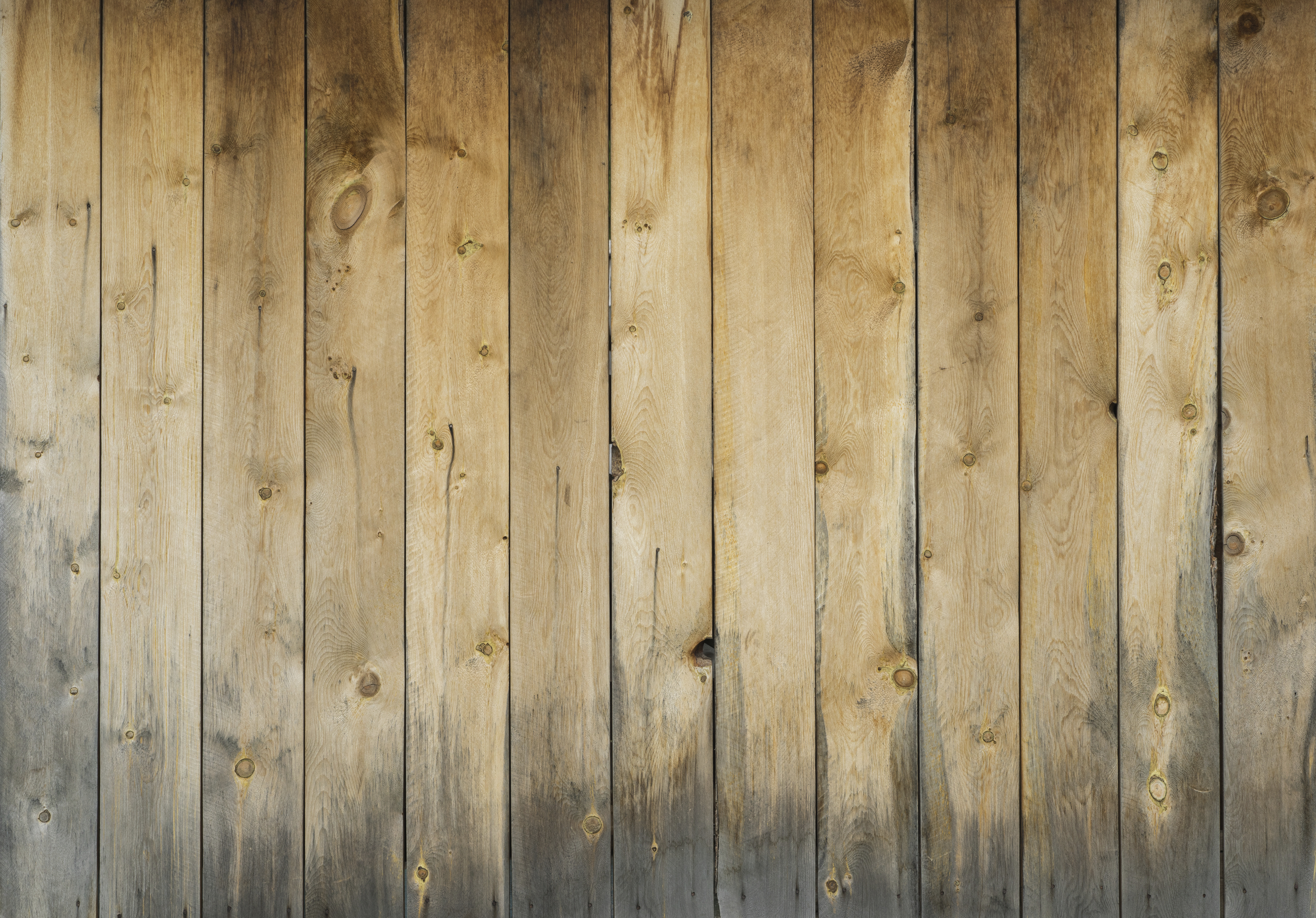 Wood Floor Discoloration: The Culprits and How to Prevent it | City ...