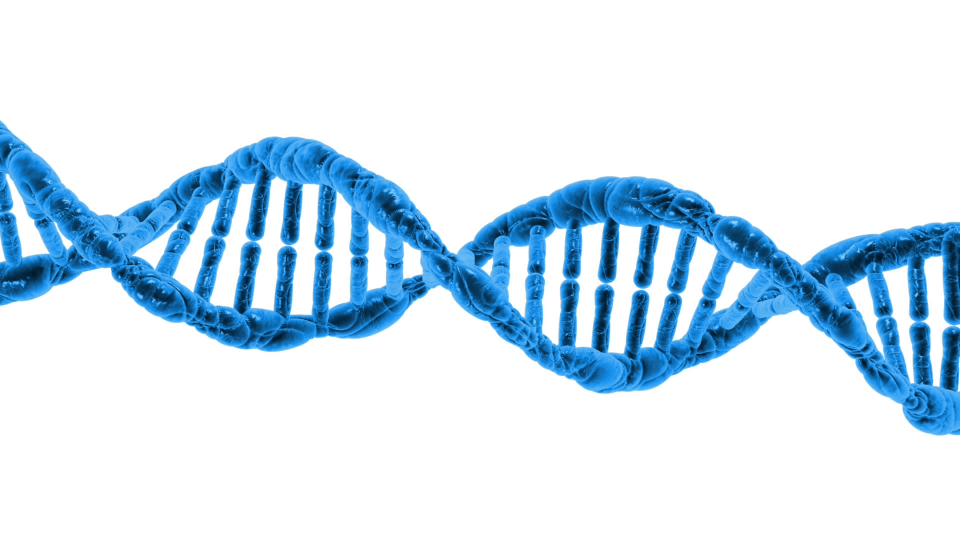 DNA String Double Helix transparent PNG - StickPNG