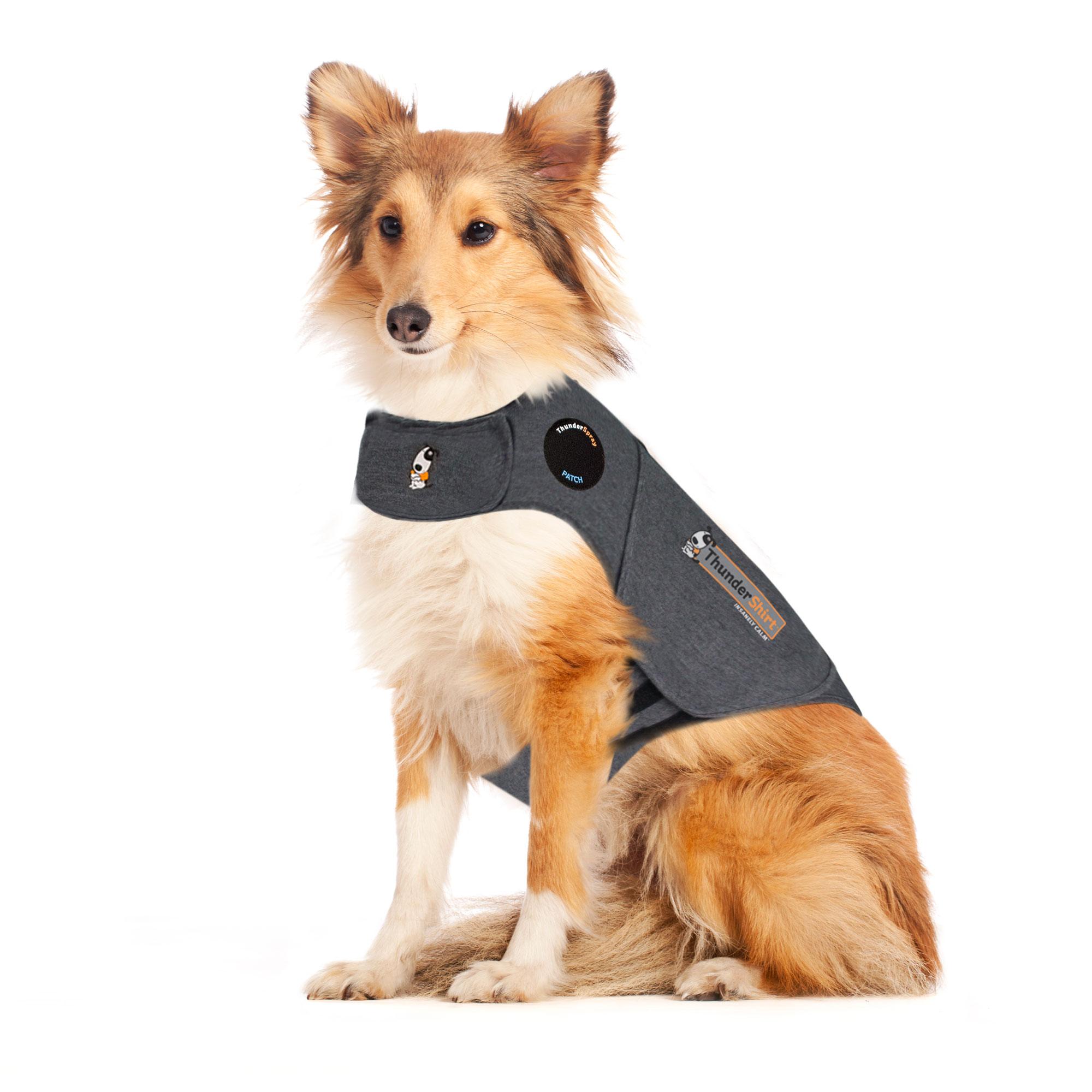 ThunderShirt Classic Dog Anxiety Jacket   ThunderWorks