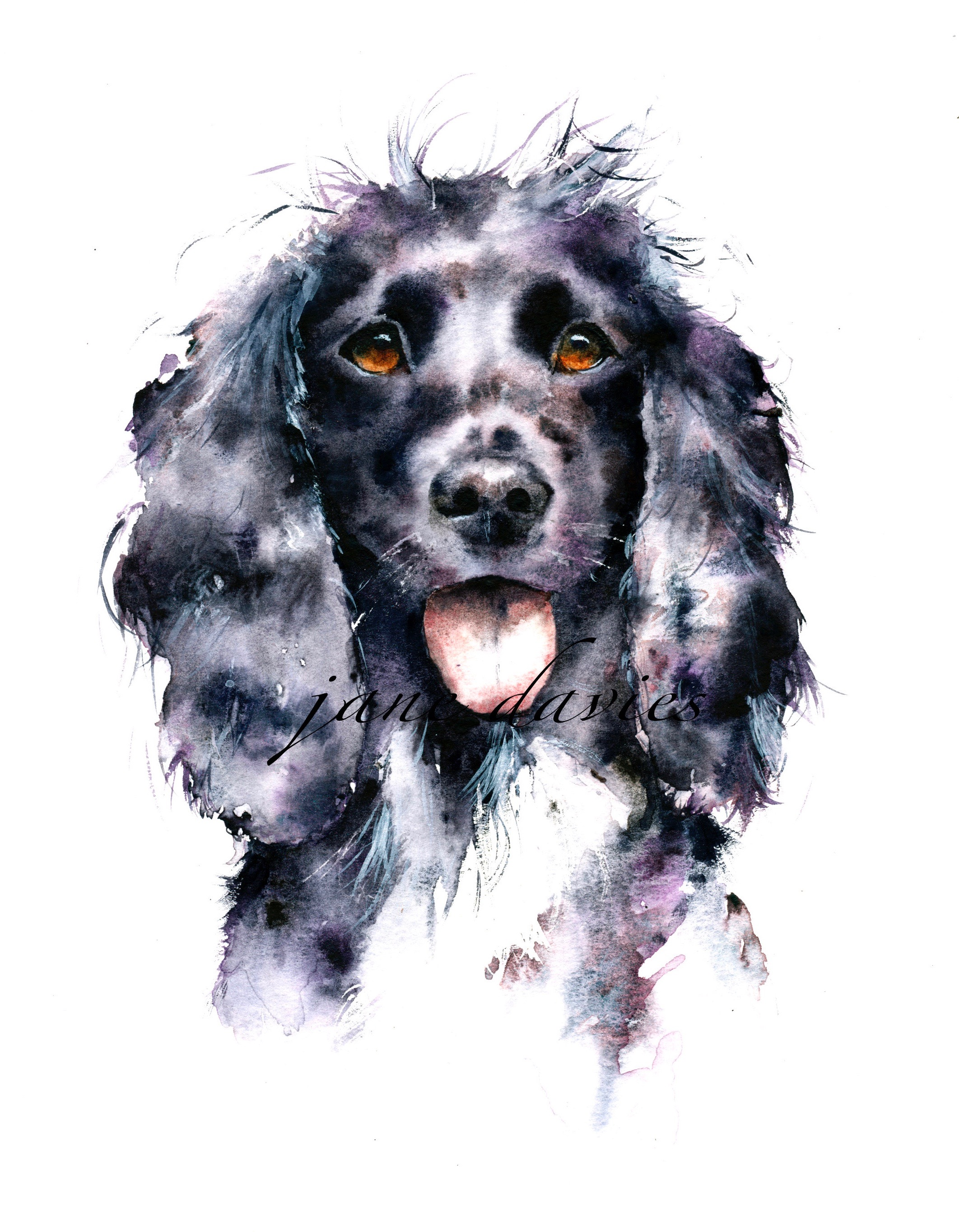 Pet portrait painting of a cocker spaniel by watercolour artist jane ...