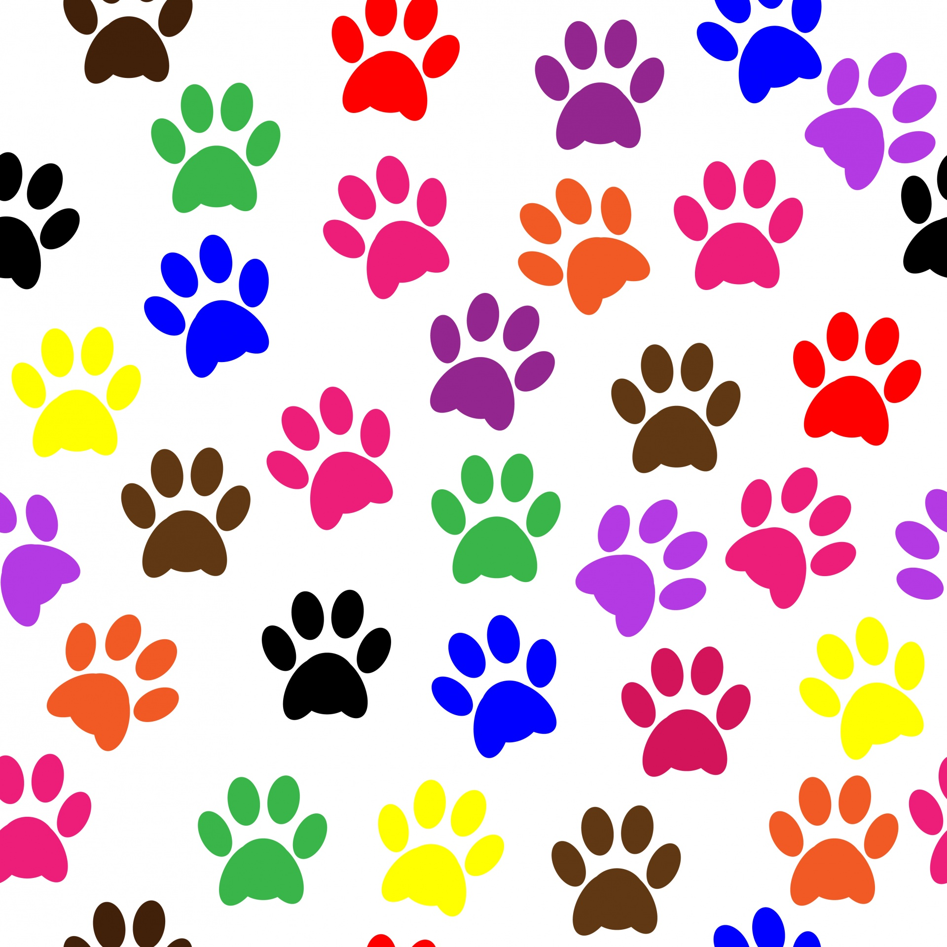 Paw Prints Colorful Wallpaper Free Stock Photo - Public Domain Pictures