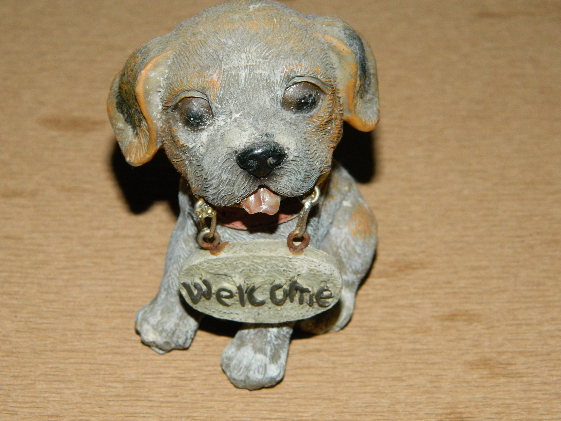 Dog with welcome sign photo