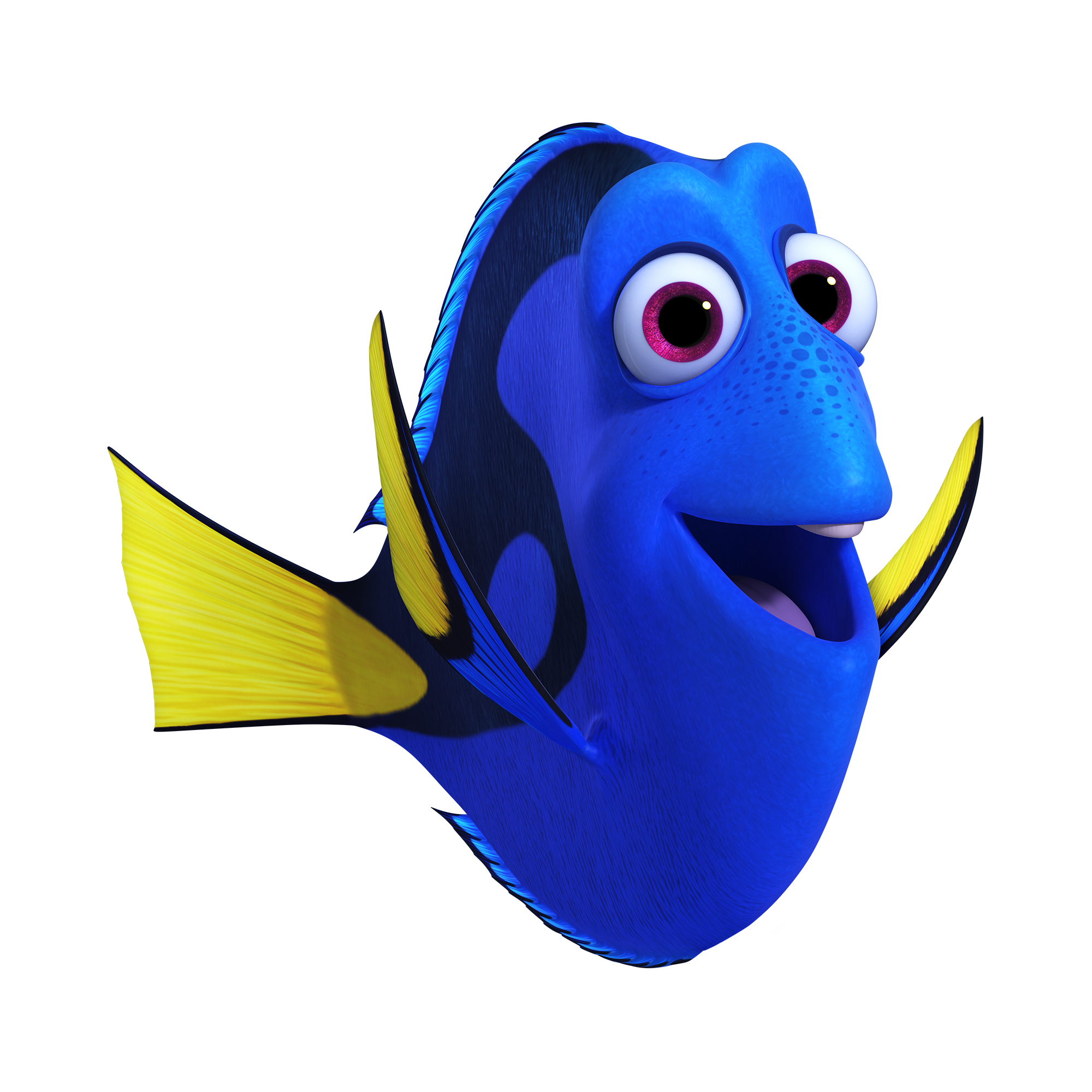 Dory | Pixar Wiki | FANDOM powered by Wikia
