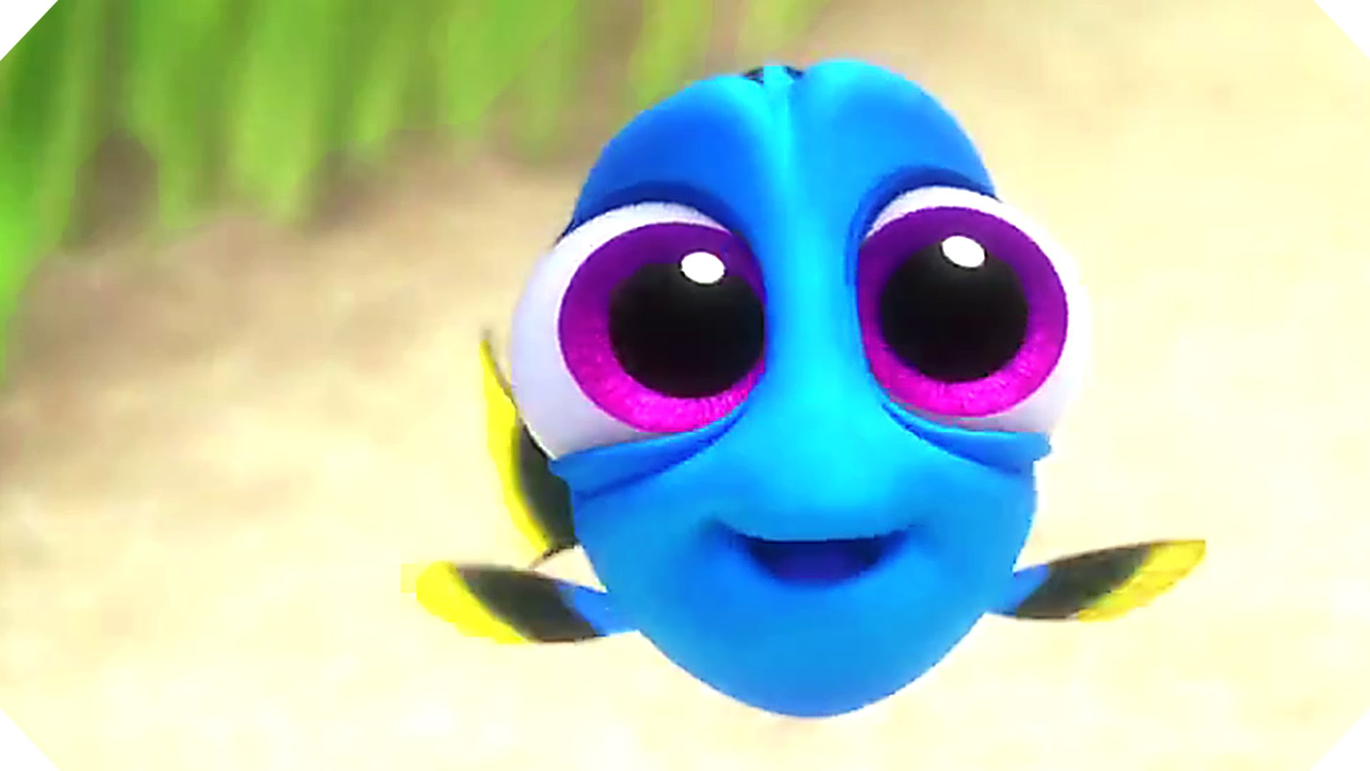 Disney Pixar's FINDING DORY - BABY Dory Movie Clip ! - YouTube