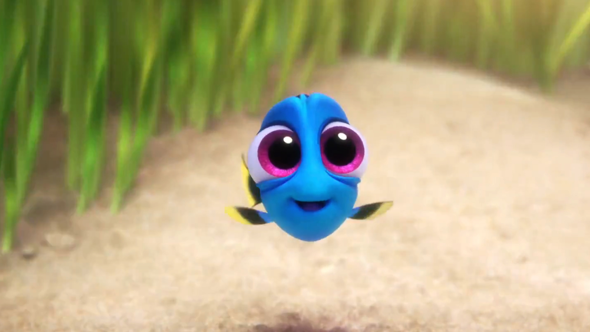 Finding Dory: Finding Dory Movie Clip - Baby Dory - Fandango