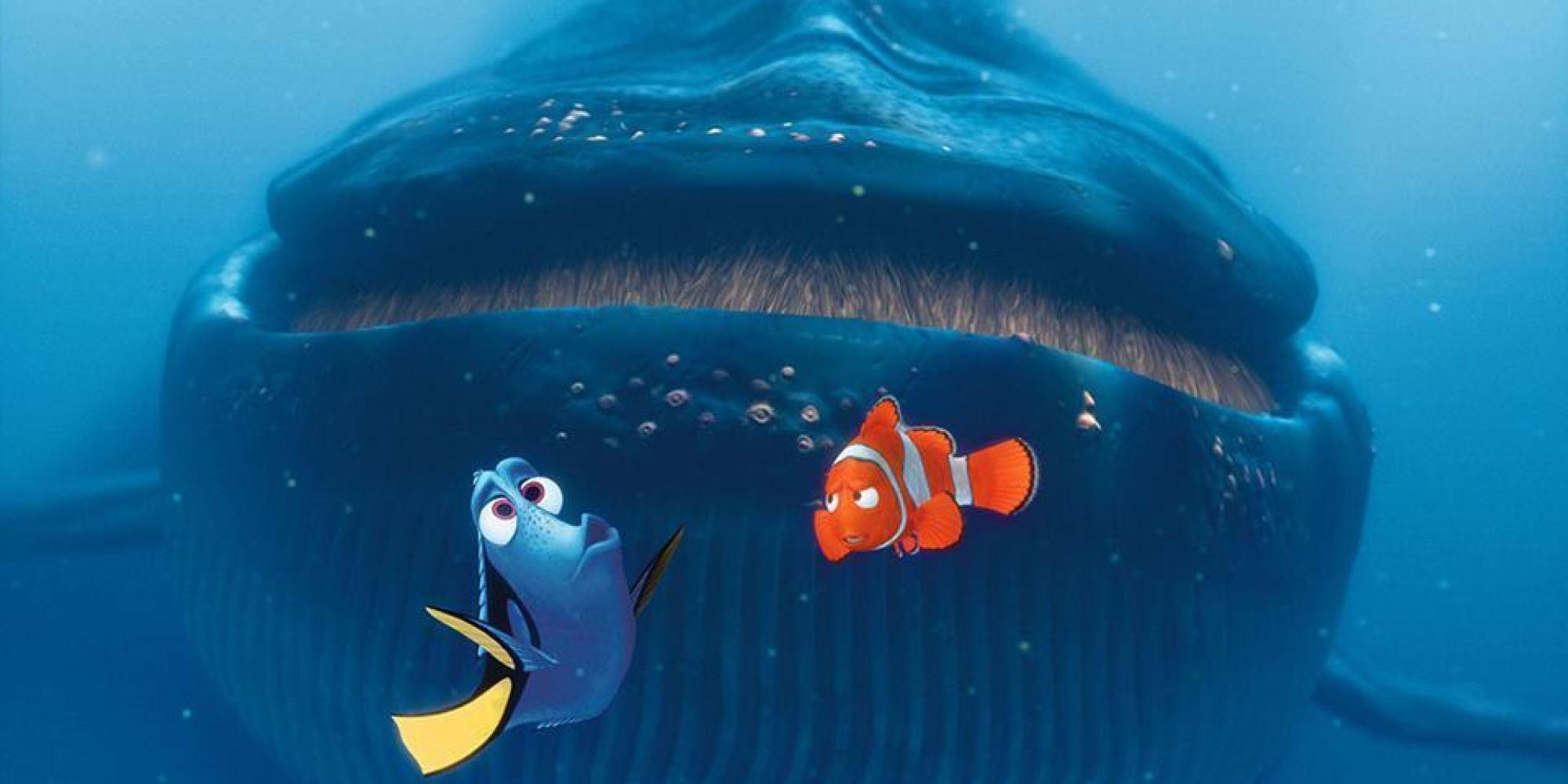 Finding Dory' Plot Details & Setting Revealed By Pixar President ...